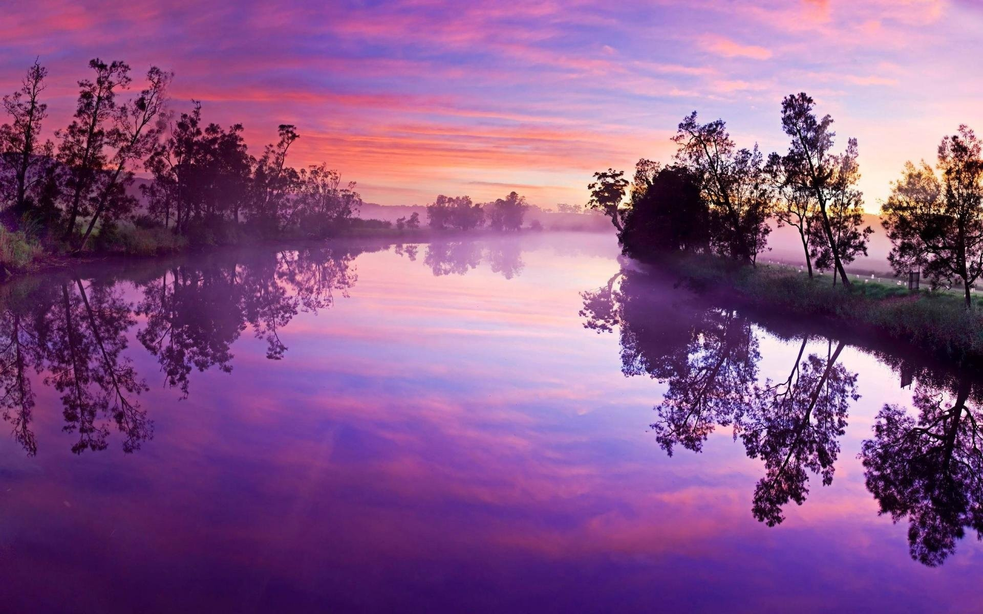 Pretty purple background 47 images - Pretty laptop backgrounds ...