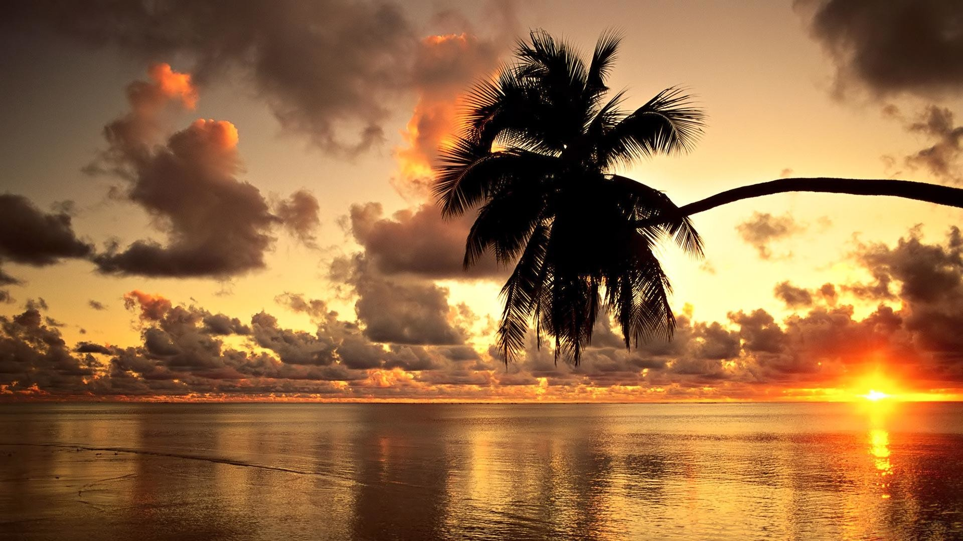 58 Hd Wallpaper Collections: HD Hawaii Wallpapers (71+ Images
