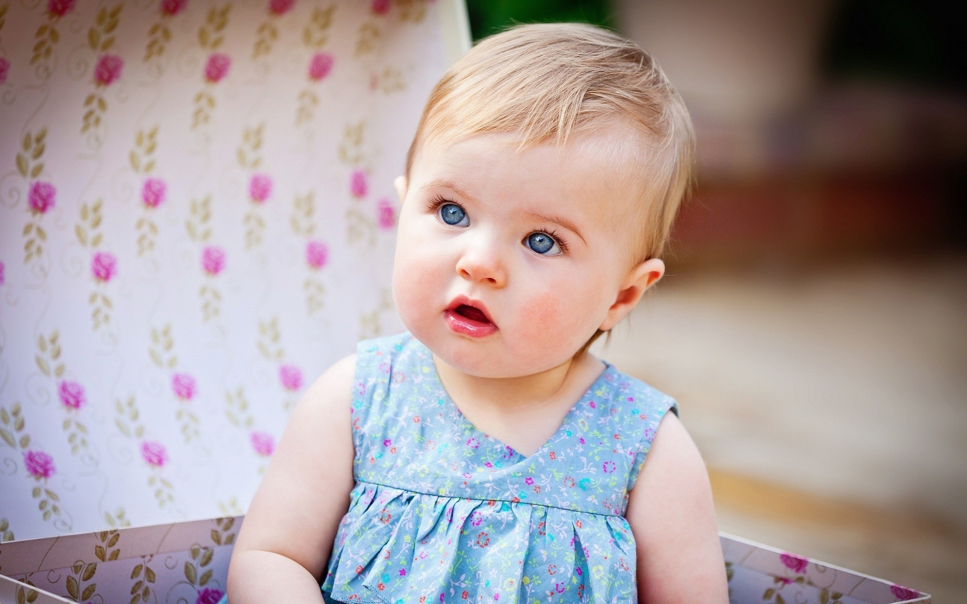 1920x1200 Innocent baby blue eyes ture high definition wallpapers