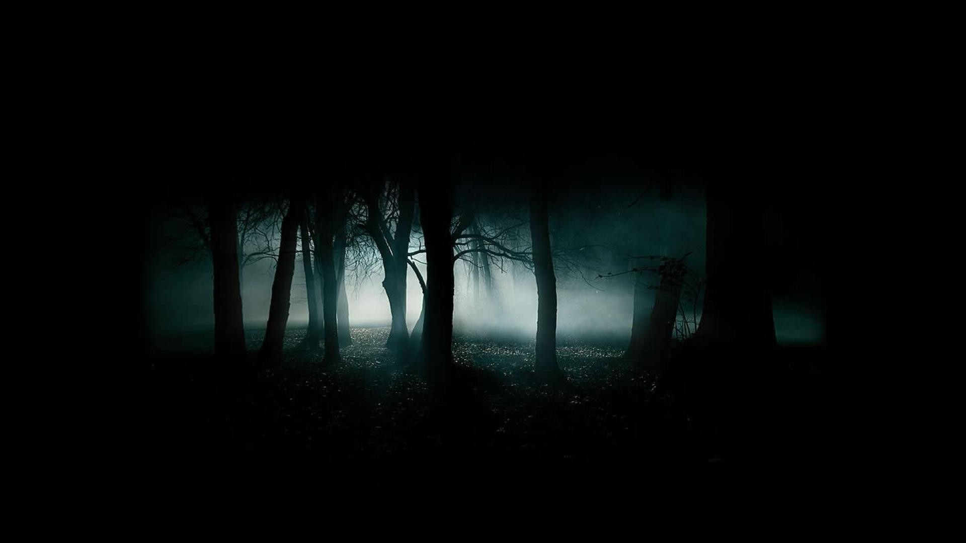1920x1080 Scary Woods Desktop Background HD Wallpaper - Beraplan.