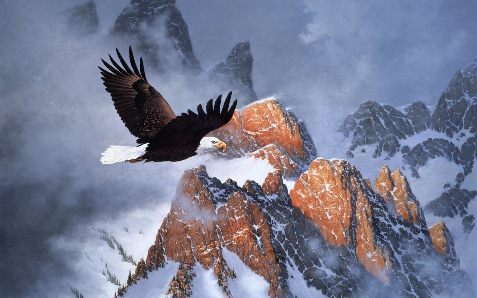 Bald Eagle Wallpapers (63+ images)