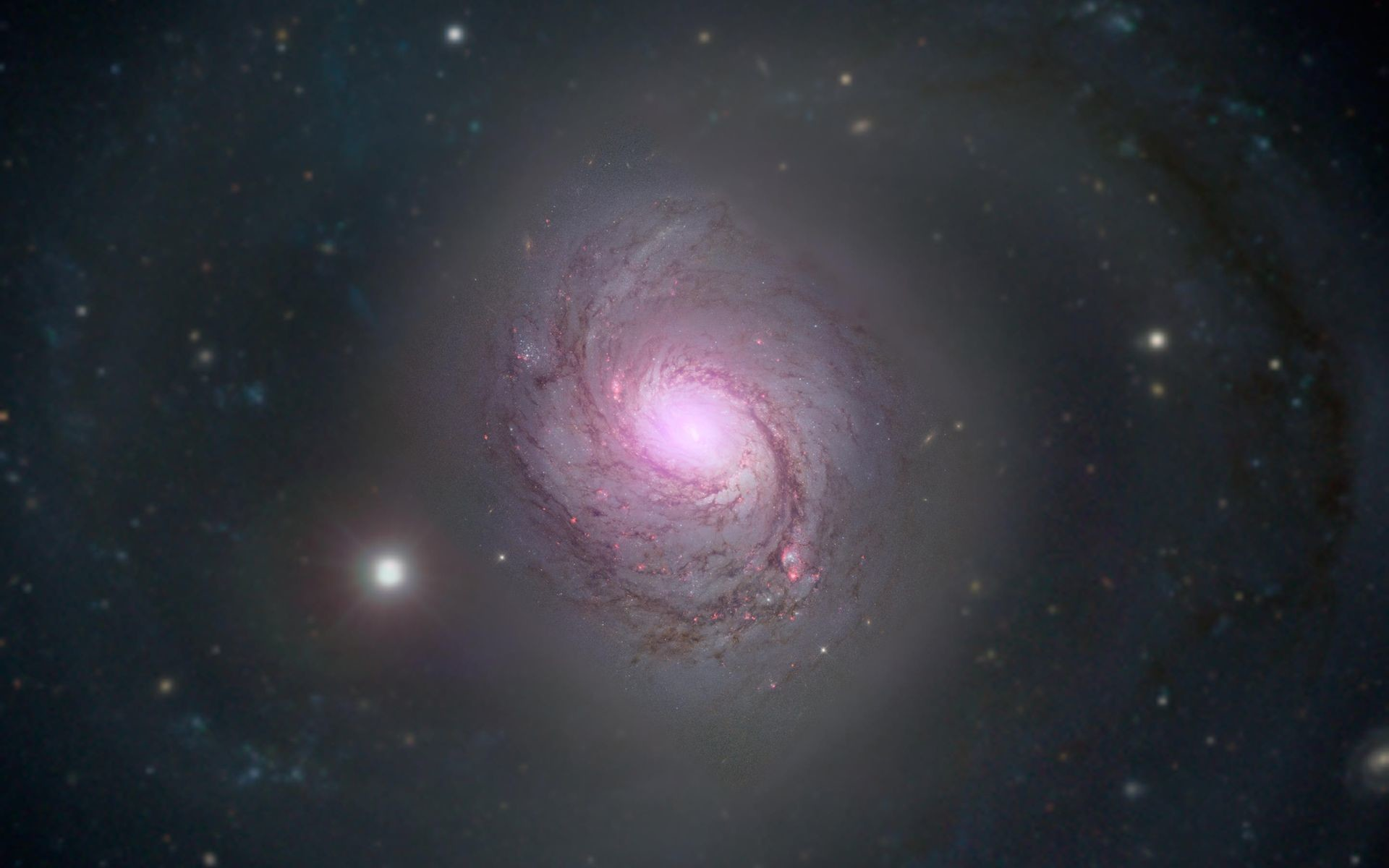 1920x1200 Galaxy NGC 1068 is shown in visible light and X-rays in this composite image