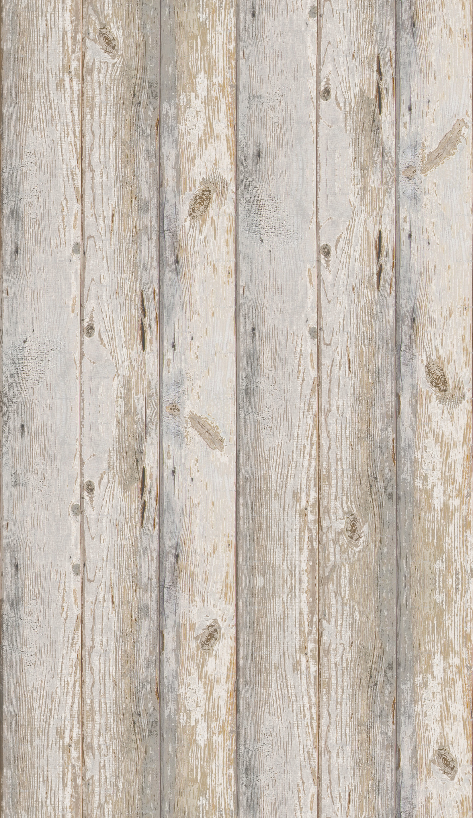 White Wood Wallpaper 46 Images