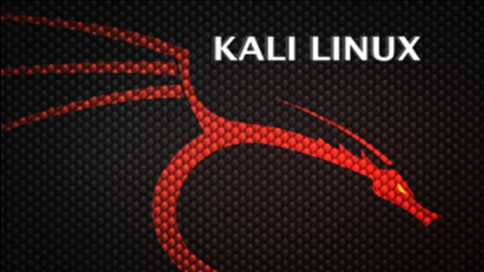 Kali Linux Desktop Wallpaper 72 Images