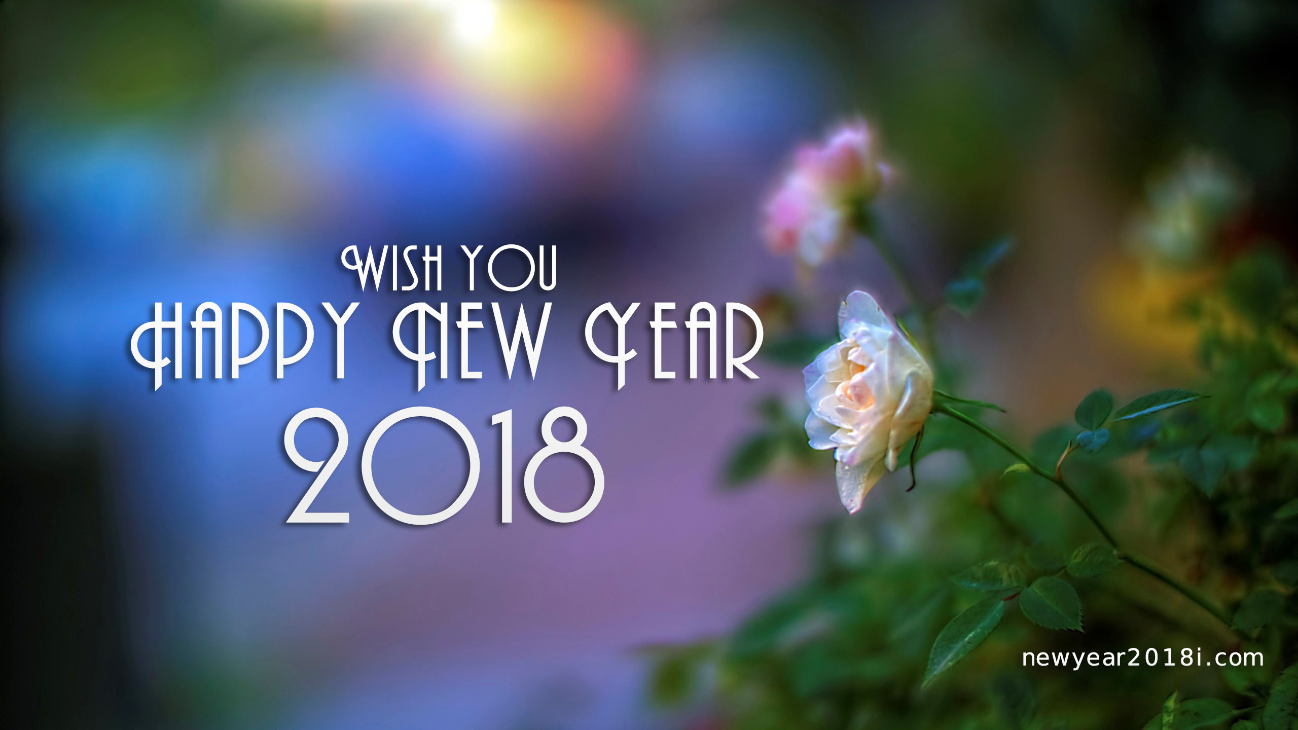 happy new year download 2560x1440 people who love to wish others with this truly remarkable collection of