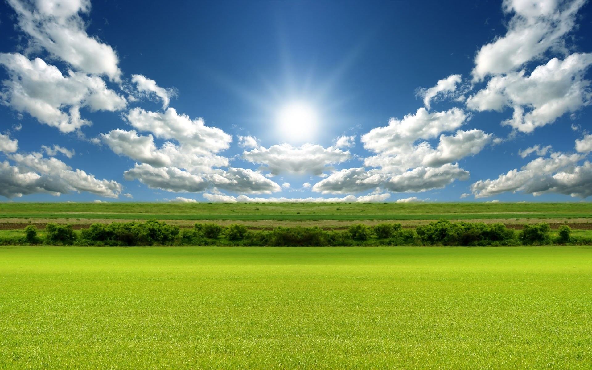 Sunny Day Wallpaper 59 Images