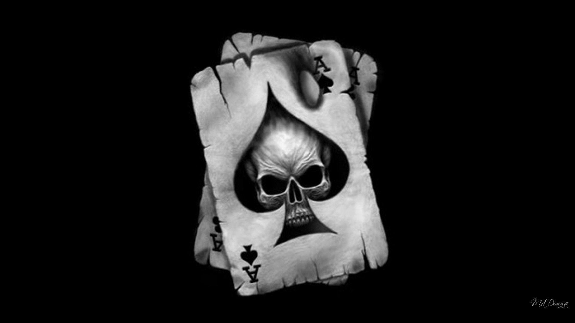 Harley Skull Wallpaper 74 Images