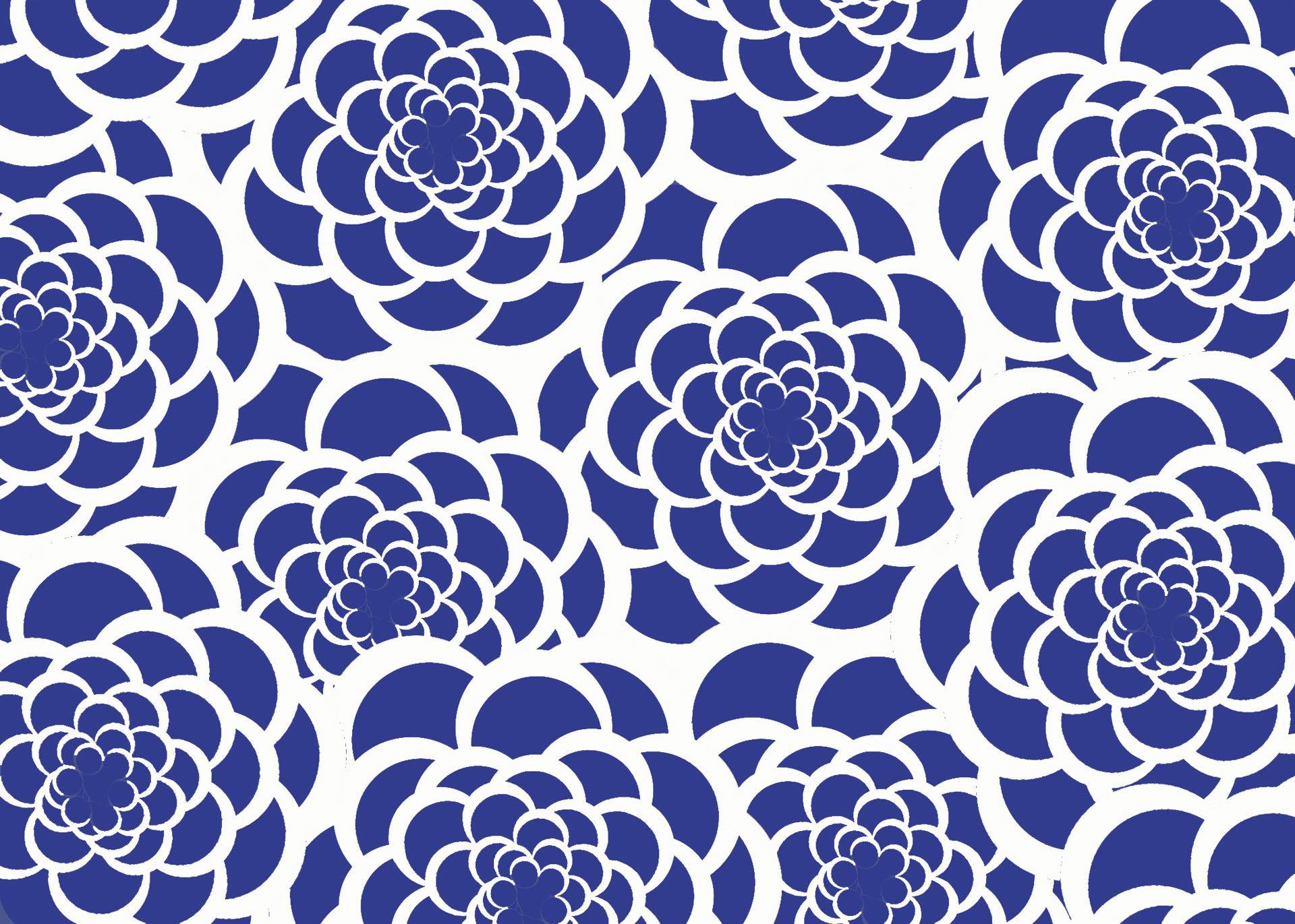 1920x1371 Blue & White Flower Background