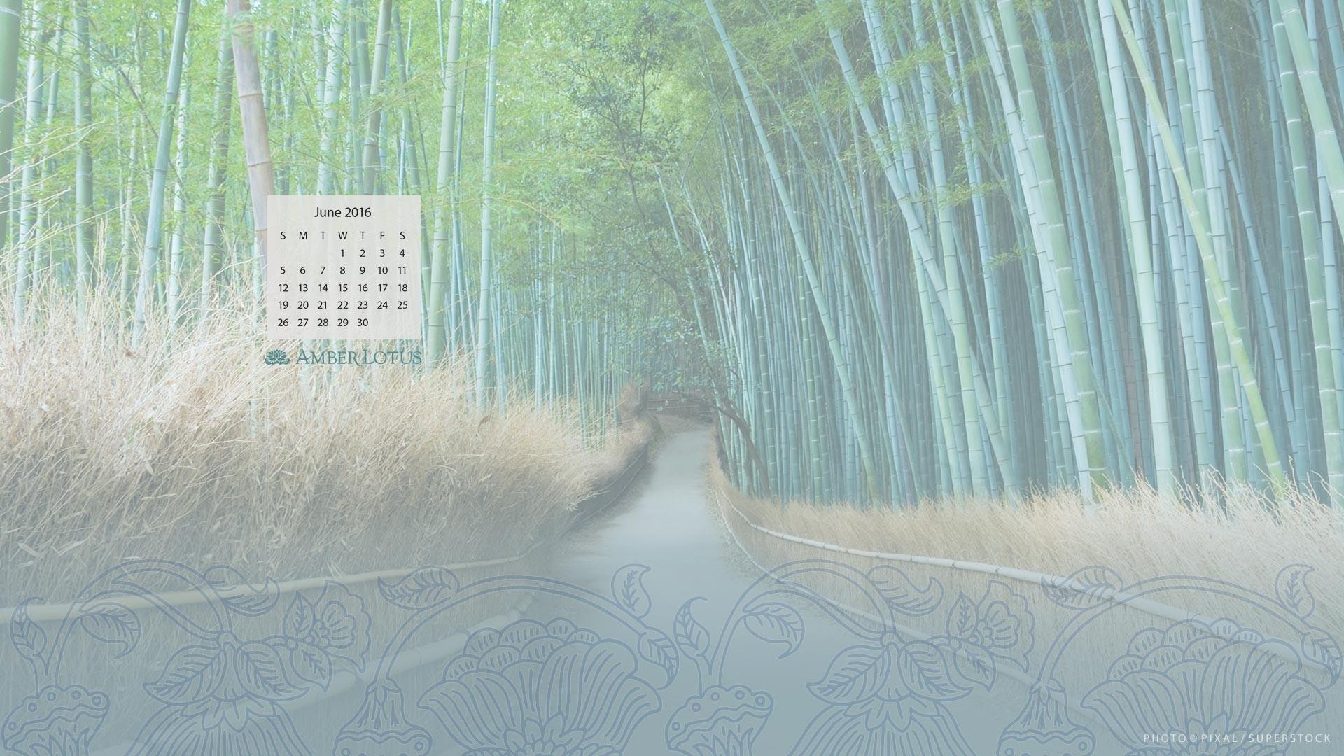 Calendar In Wallpaper : Wallpaper calendars for  images