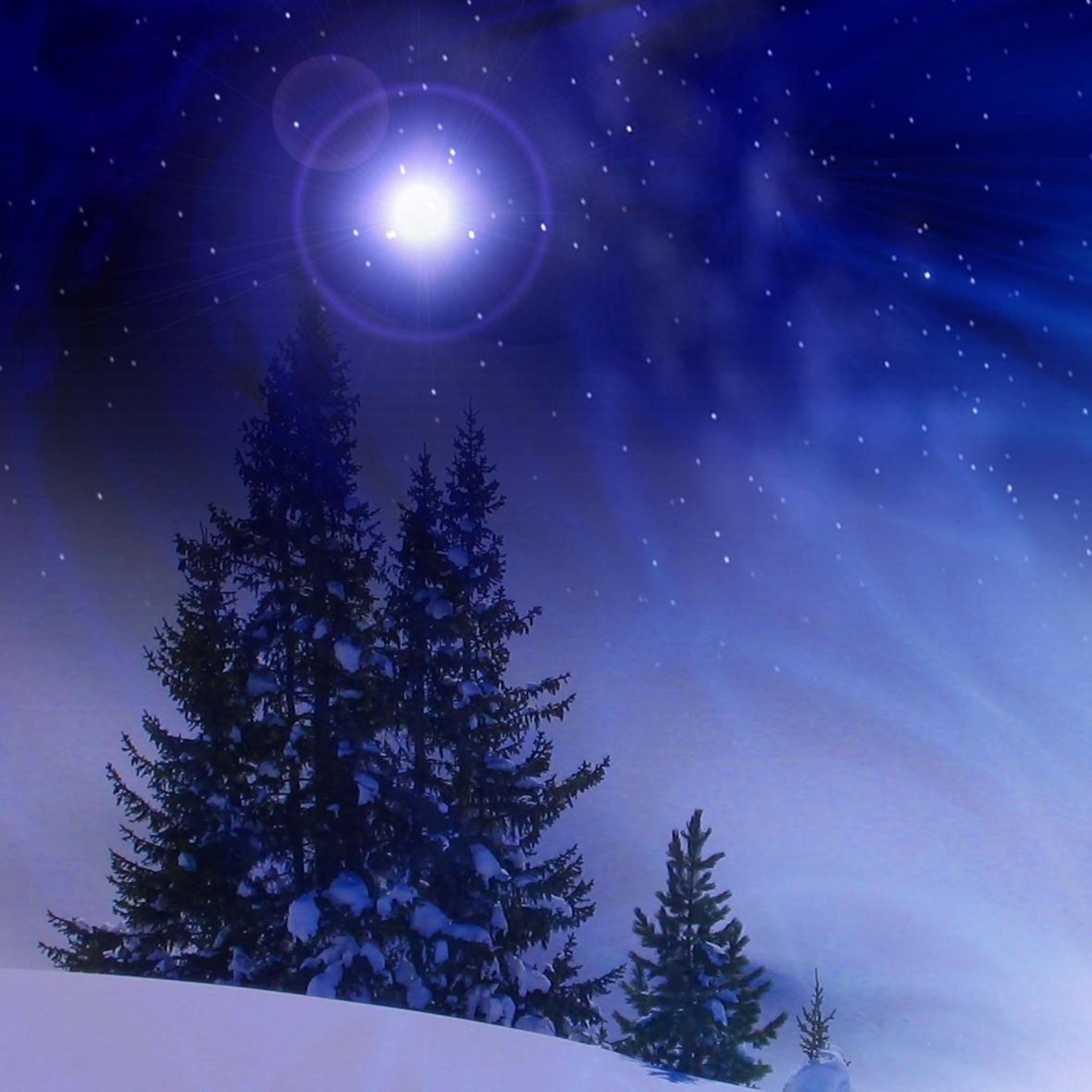 Snow Live Wallpaper: Christmas Tree Snow Wallpaper (73+ Images