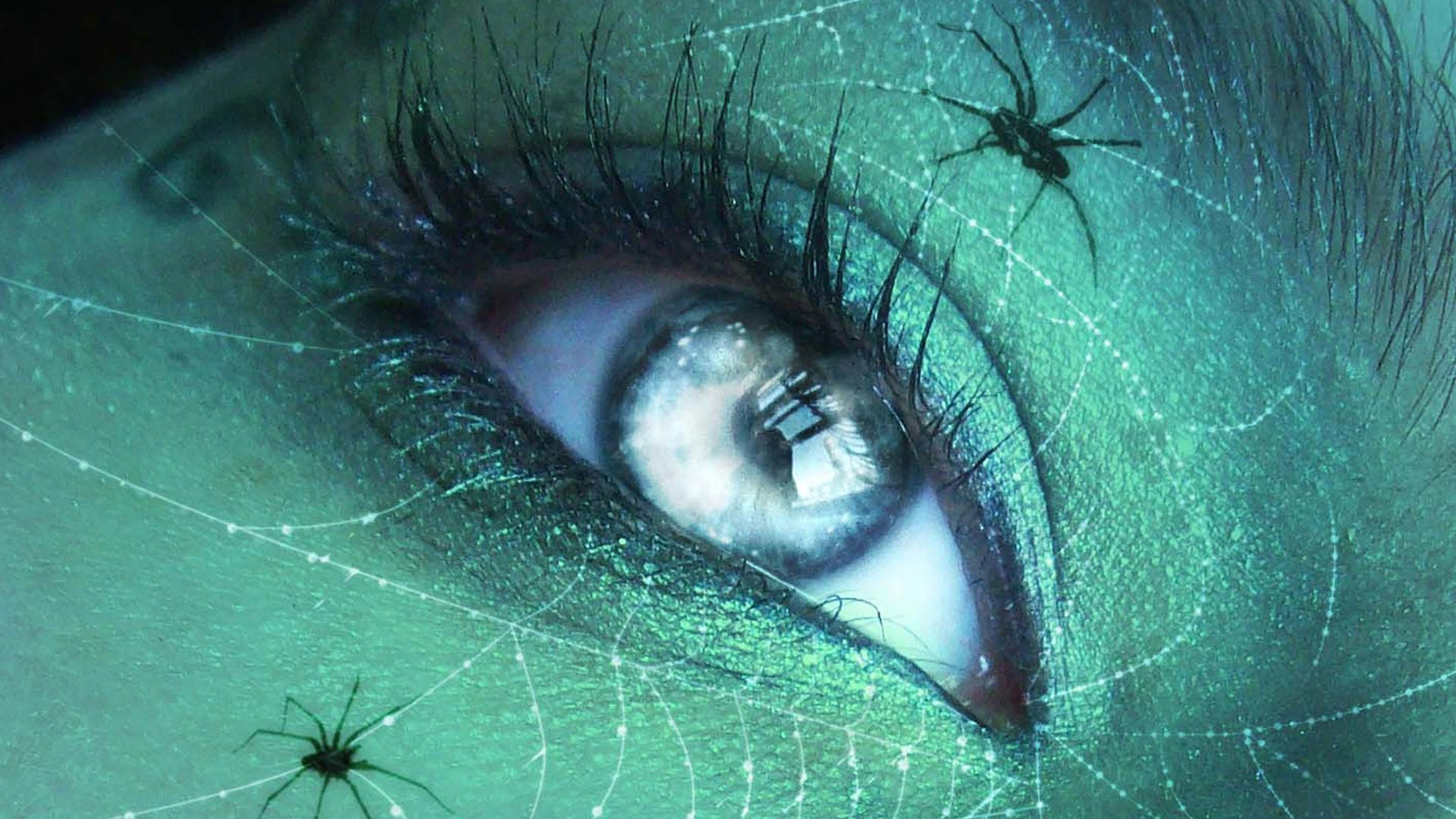 1920x1080 hd pics photos beautiful cute eye close up spider web macro hd quality  desktop background wallpaper
