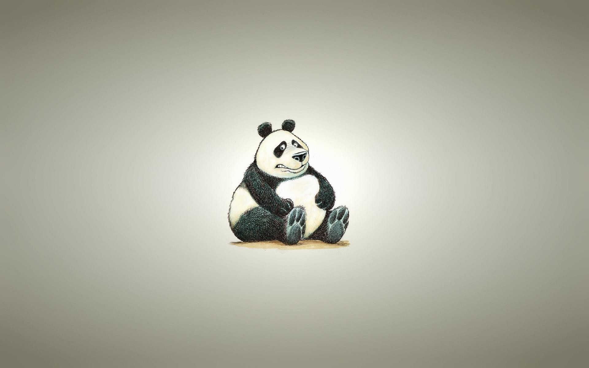 1920x1200 Wallpaper-HD-Fat-Panda-Bear