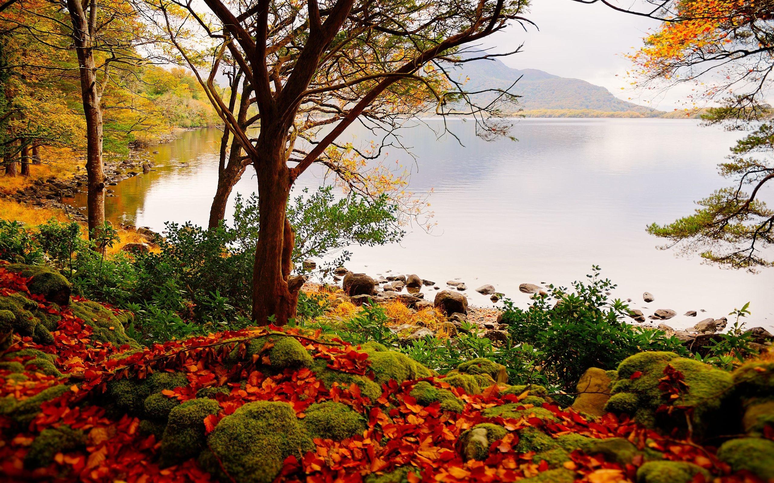 Beautiful Landscape Backgrounds (67+ Images