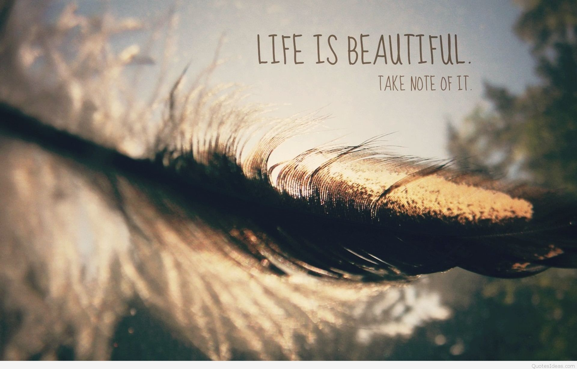 1920x1227 ... Life is beautiful HD wallpaper with quote