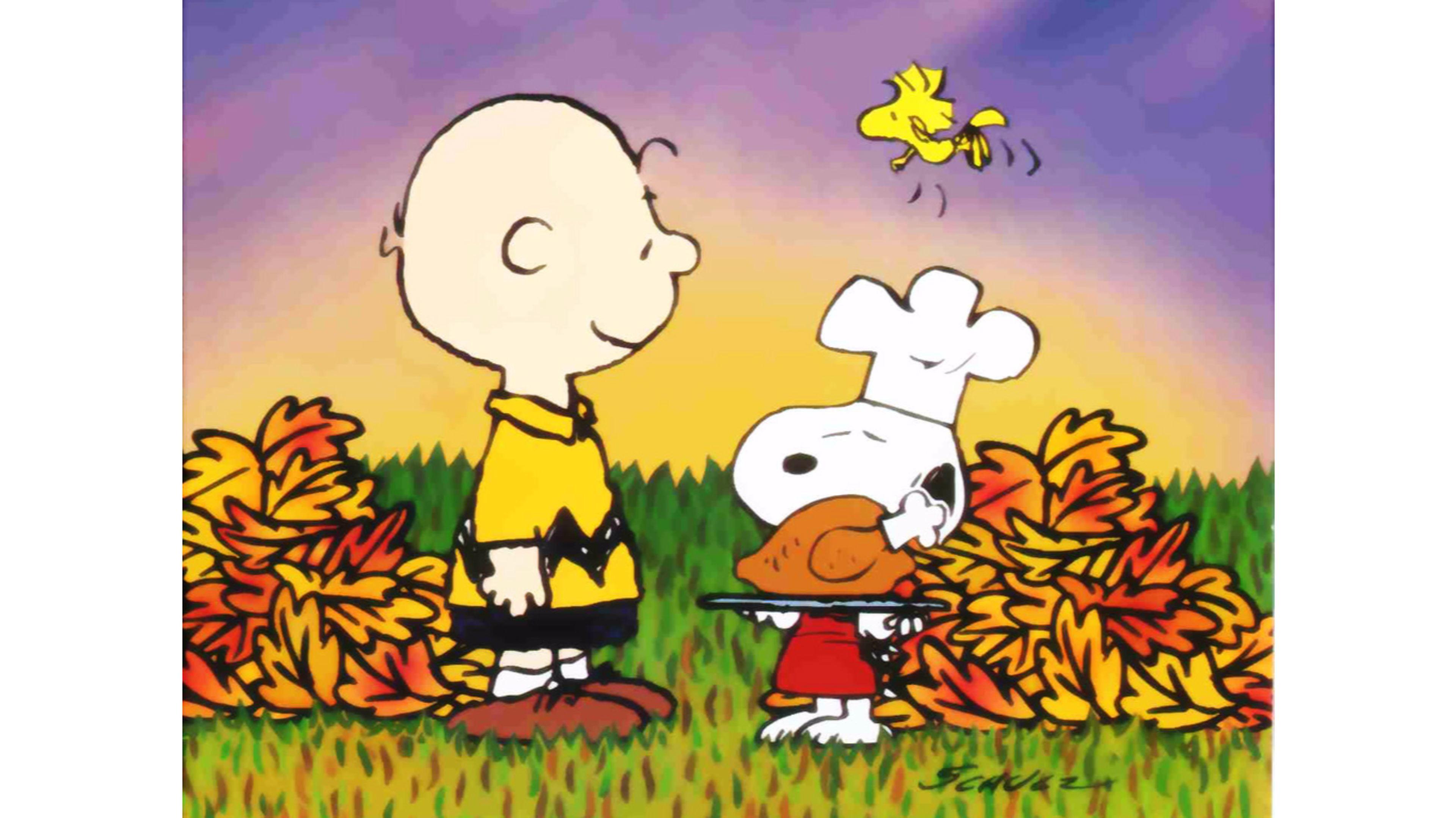 Peanuts Halloween Wallpaper (51+ images)