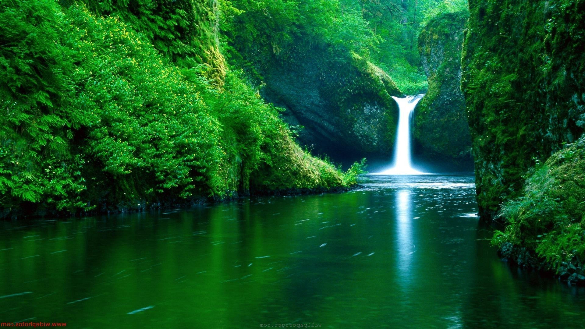 nature wallpapers and screensavers (67+ images)