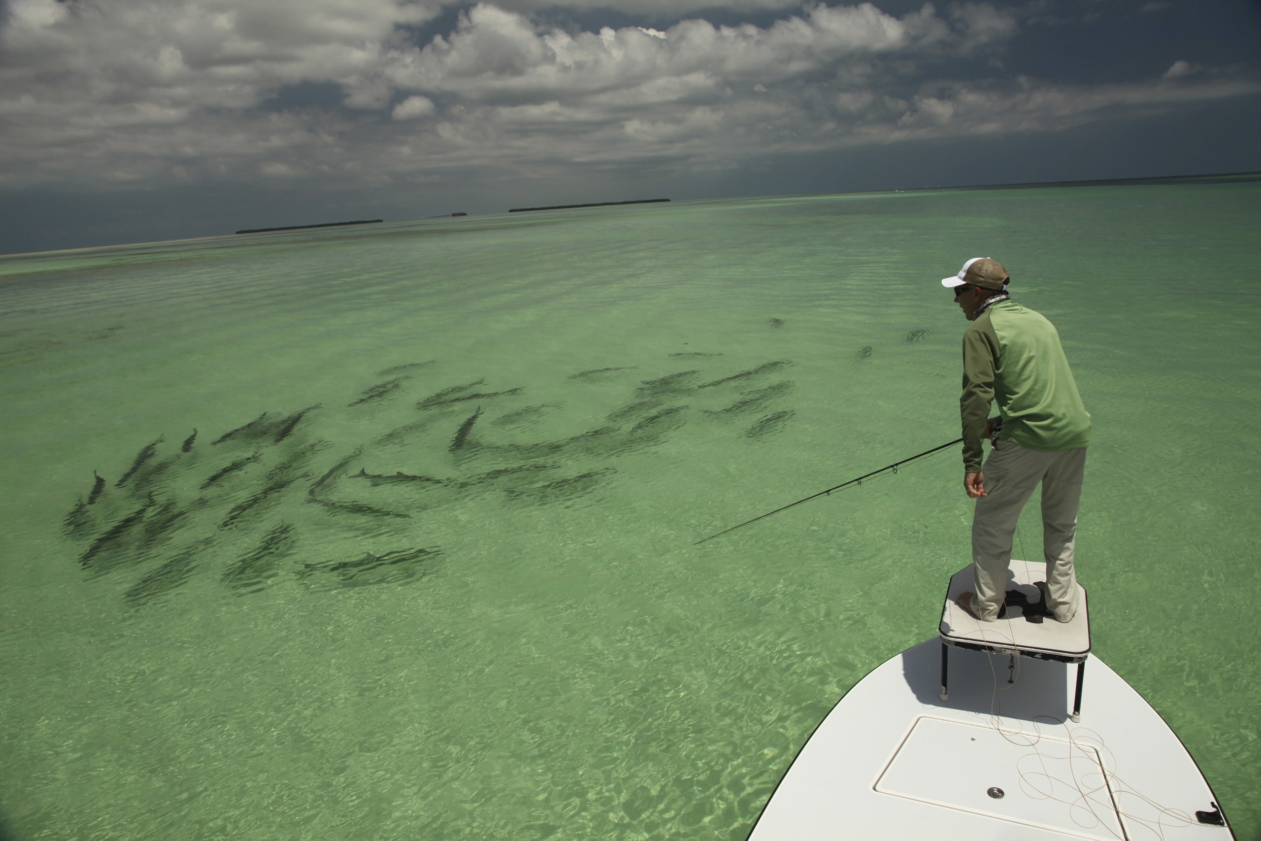 2560x1707 Back Pix For Saltwater Fly Fishing Art