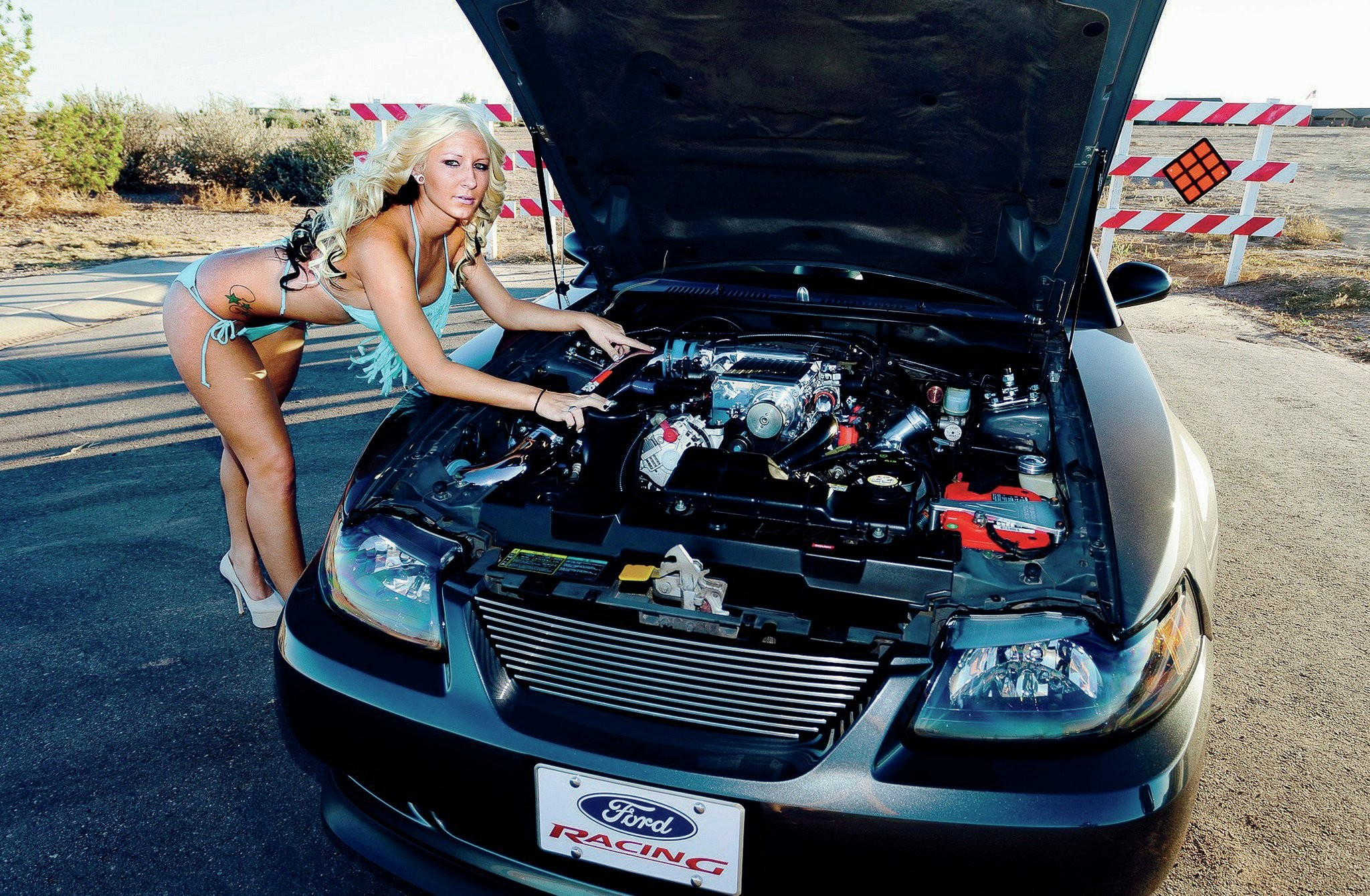 2048x1340 2003-ford-mustang-engine-view-emily-oney.jpg (2048×1340) | Cars And Girls |  Pinterest | Cars