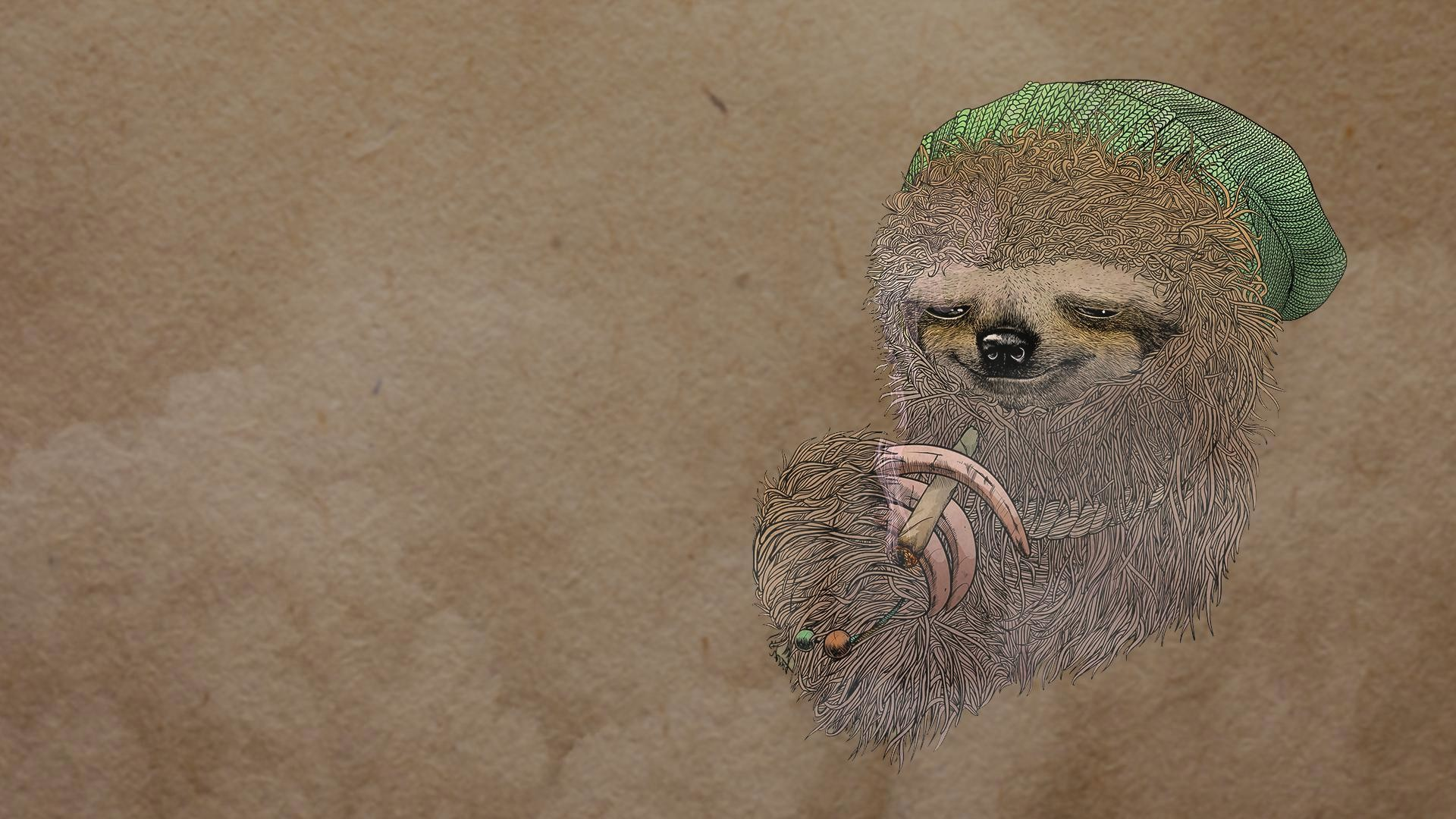 1920x1080 Sloth-Image-Download-Free