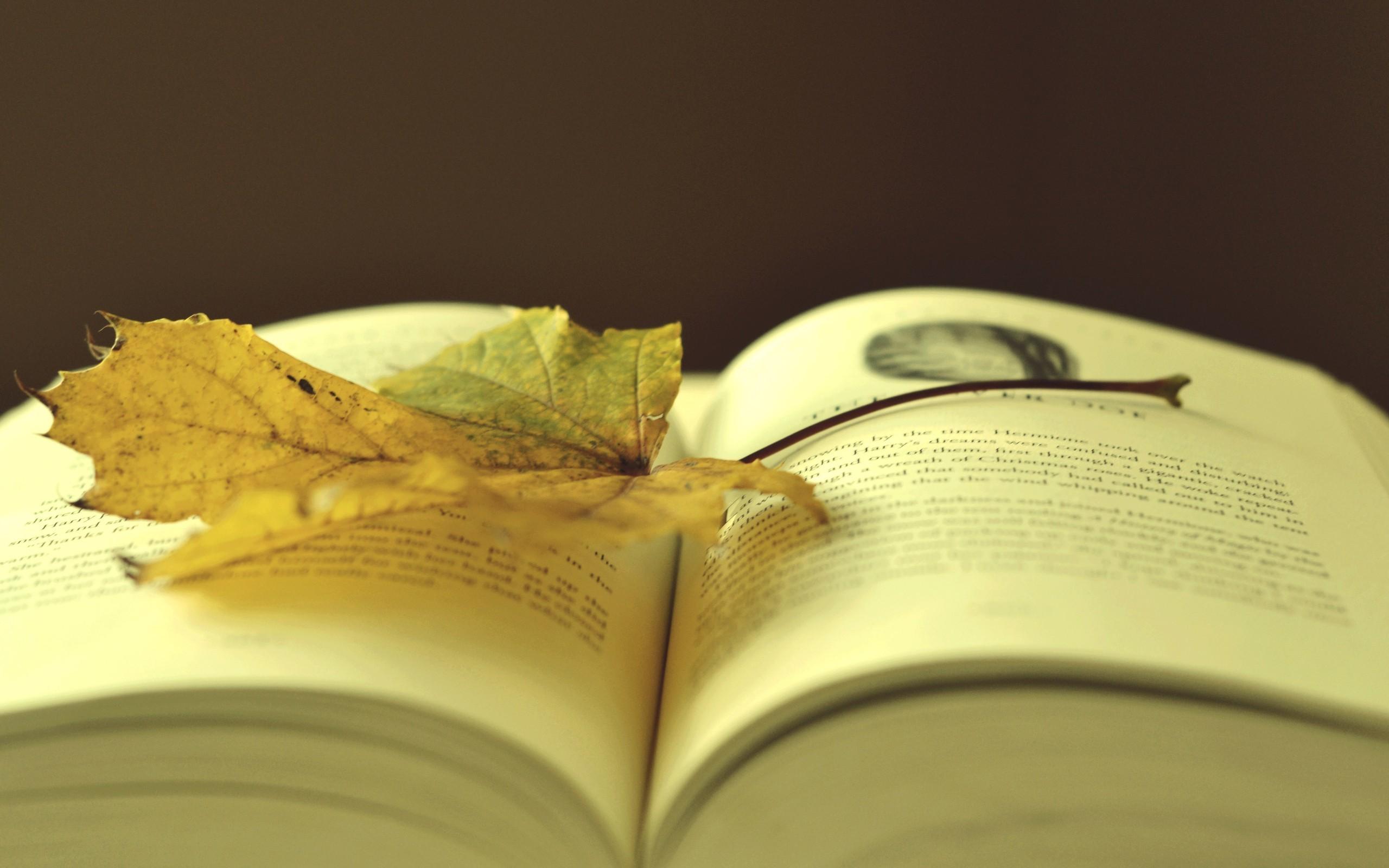Book Wallpaper Hd 61 Images
