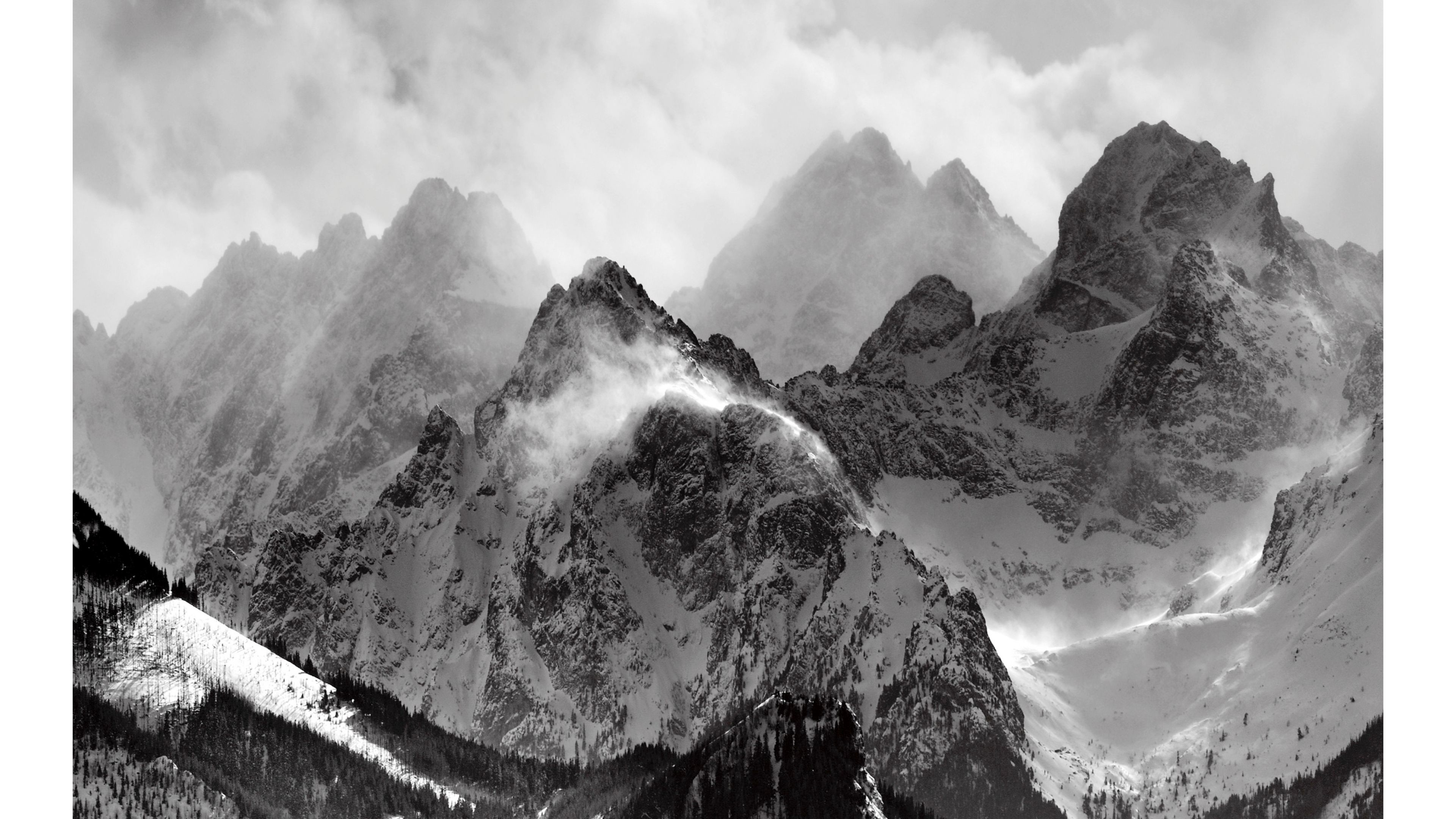 4k black and white wallpaper 48 images - White and black wallpaper ...