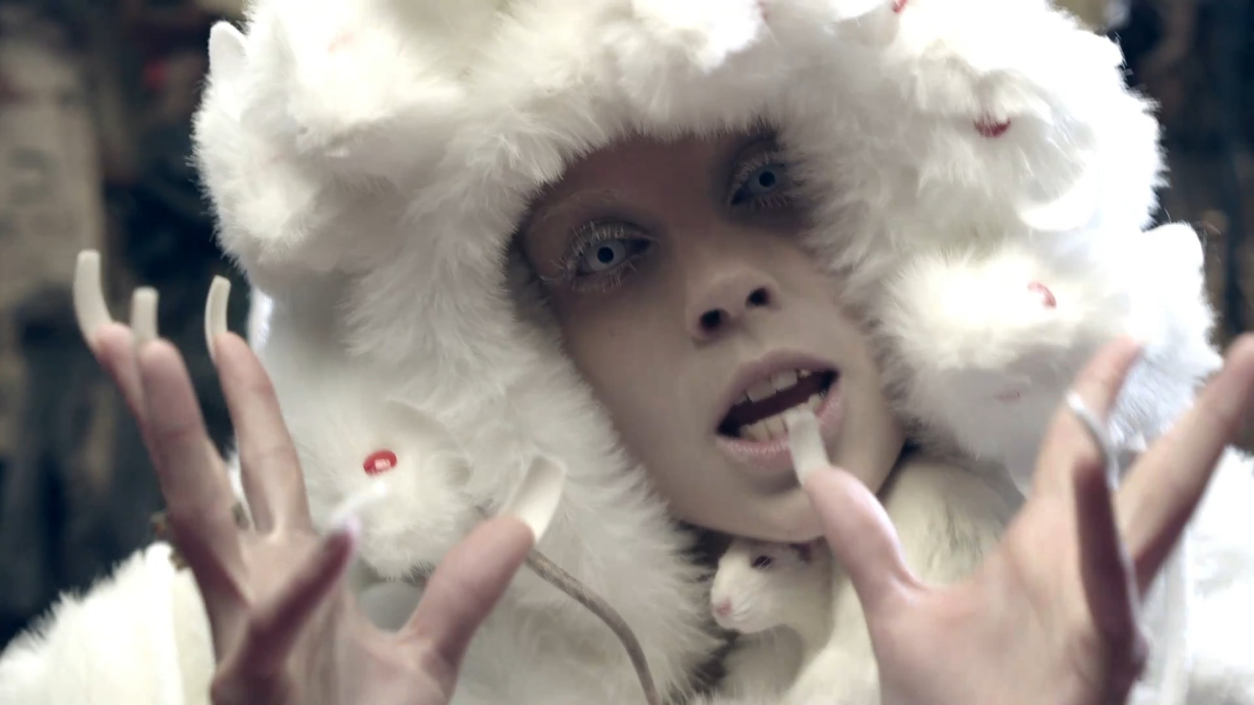 2560x1440 Download Wallpaper · Back. white rats die antwoord ...