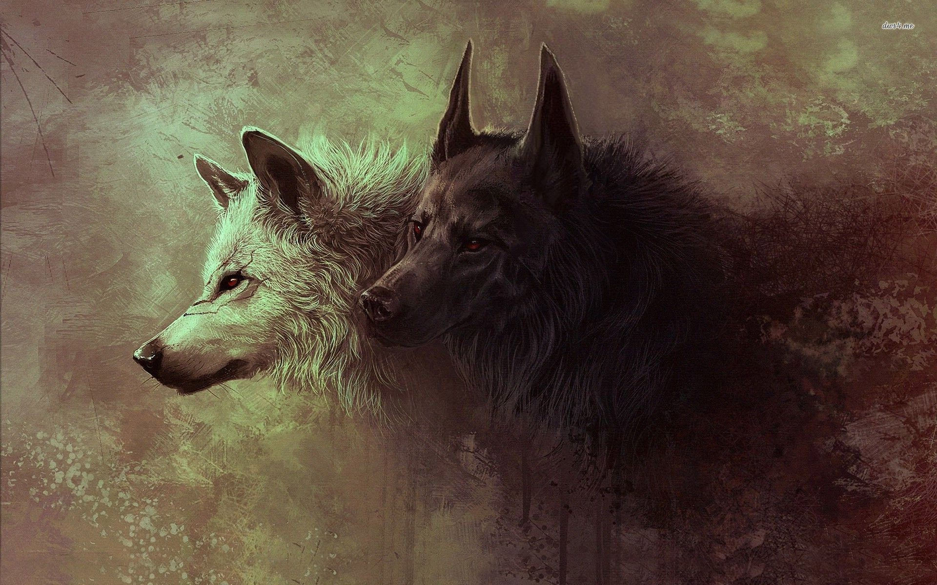 1920x1200 839 Wolf HD Wallpapers Backgrounds Wallpaper Abyss - HD Wallpapers