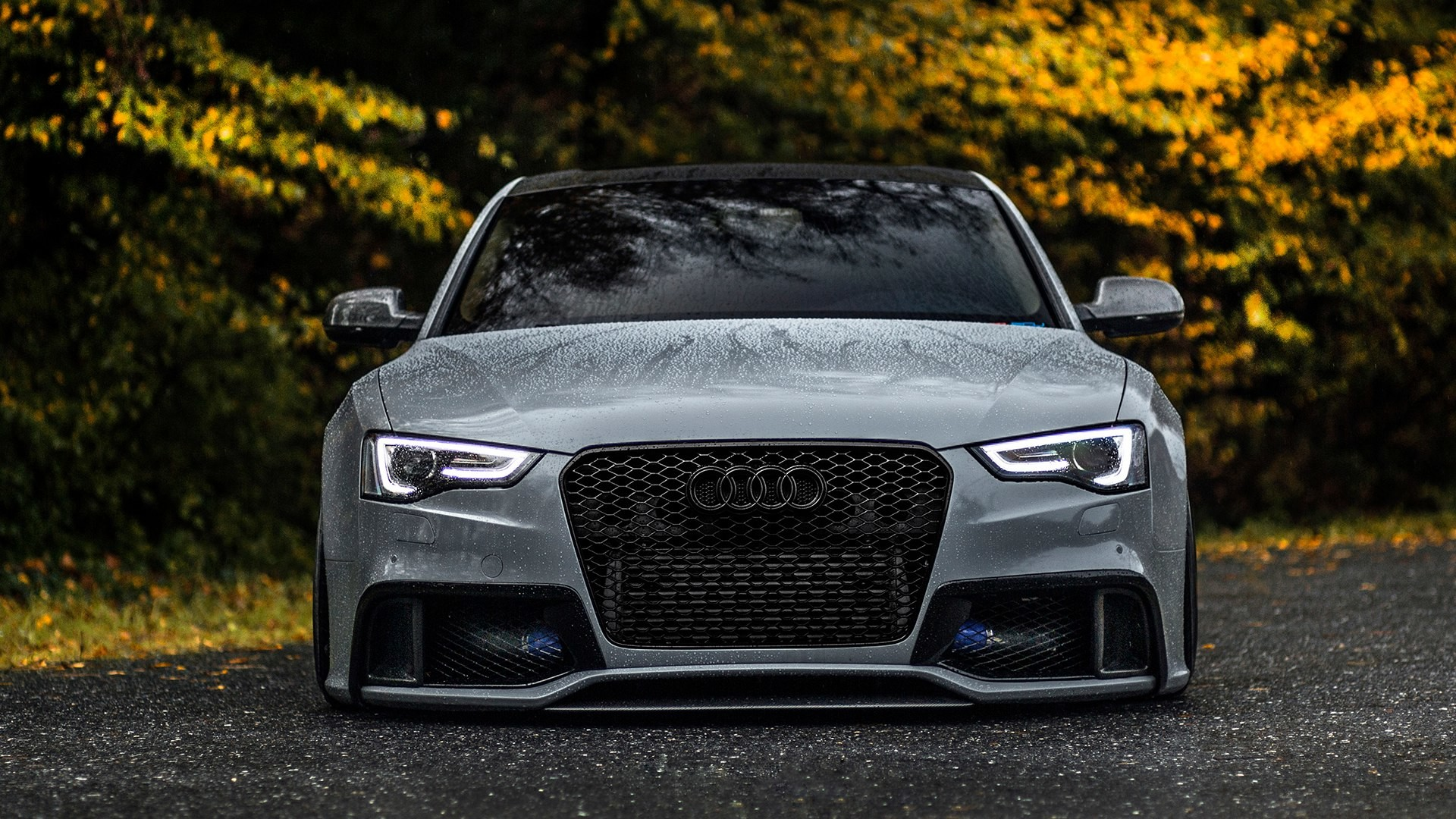 1920x1080 Audi RS5 Wallpapers