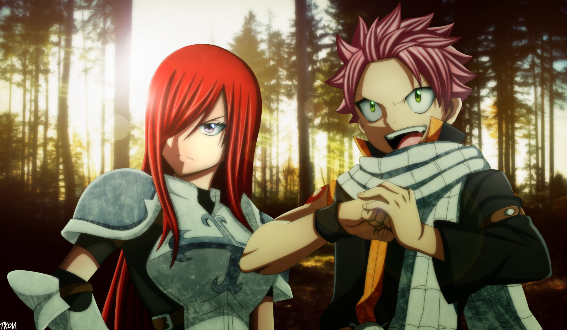 1937x1130 FAIRY TAIL · download FAIRY TAIL image · 33 Fav Erza Scarlet