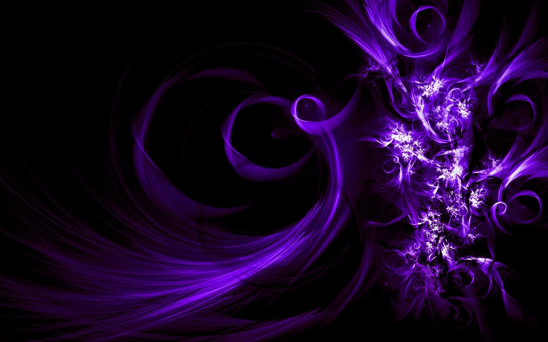 1920x1200  Dark Purple Rose Background · Download ... purple ...