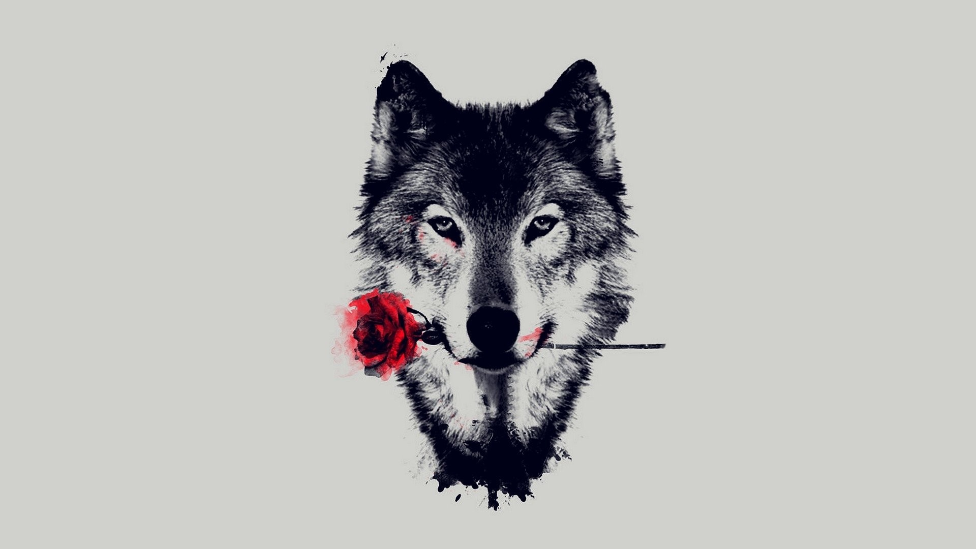 1920x1080 Animal - Wolf Artistic Red Rose Wallpaper