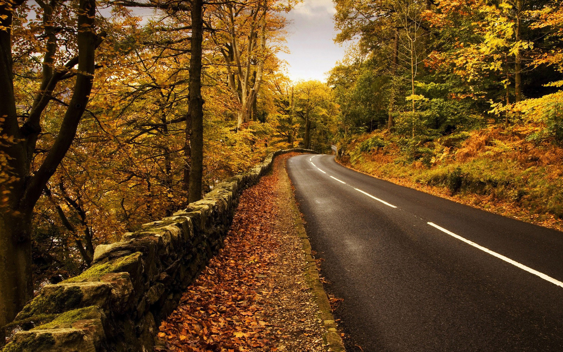1920x1200 Mountain road in the fall wallpaper - 753657