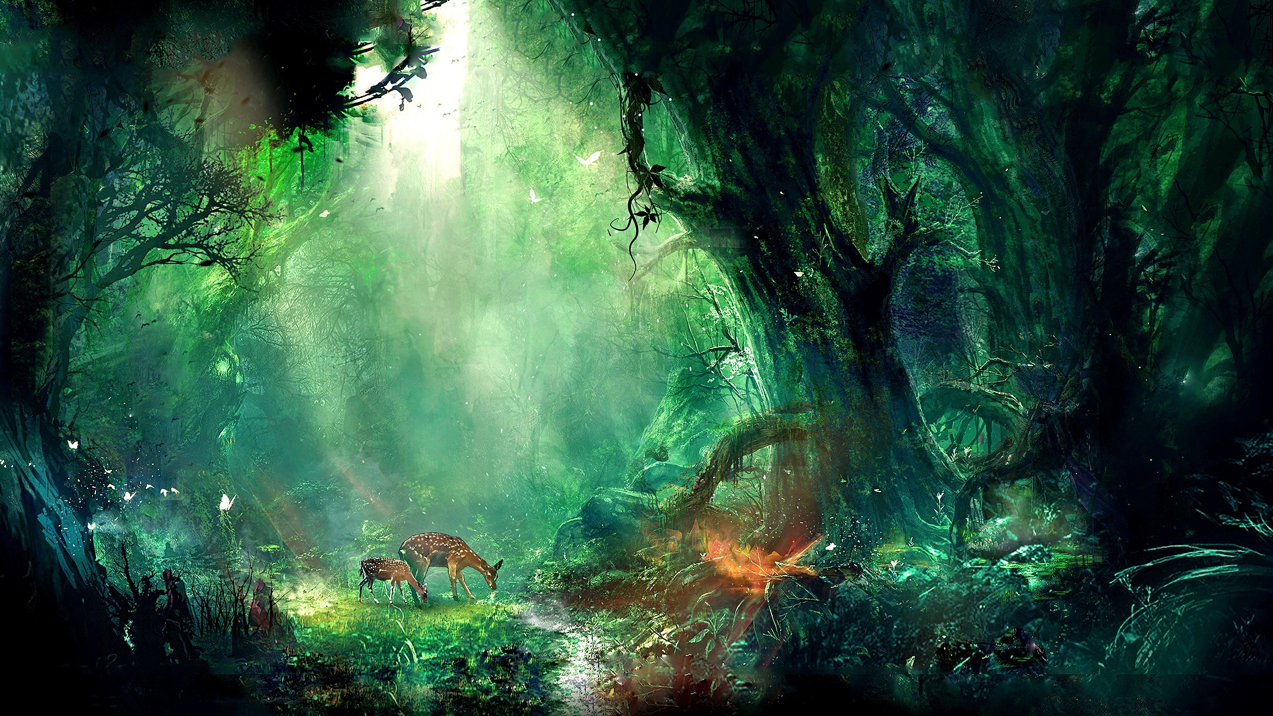 2560x1440 Image result for fairies fantasy