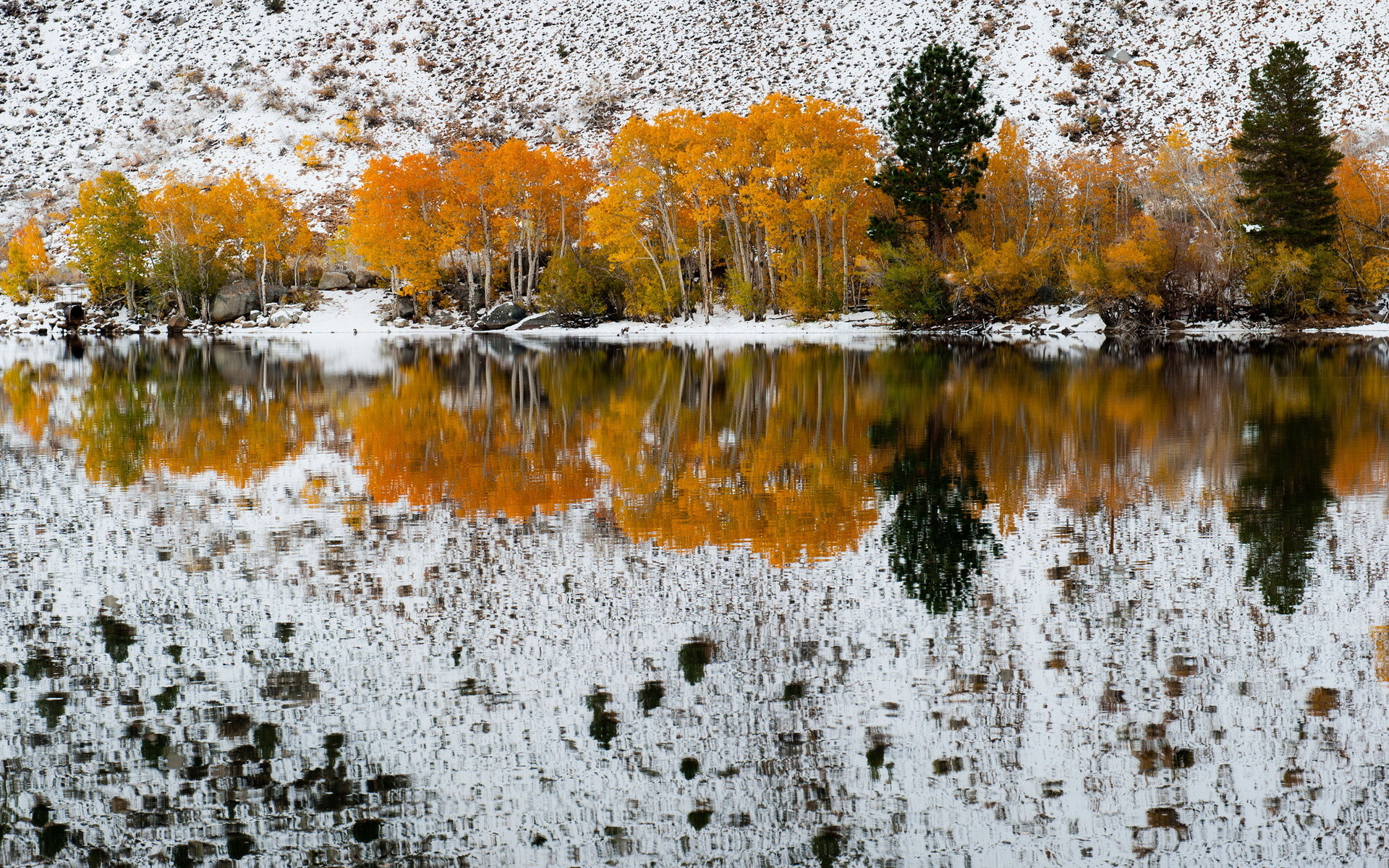 1920x1200 ... Beautiful late fall early winter landscape , winter Colors trees  Reflected In Sabrina Lake, Bishop