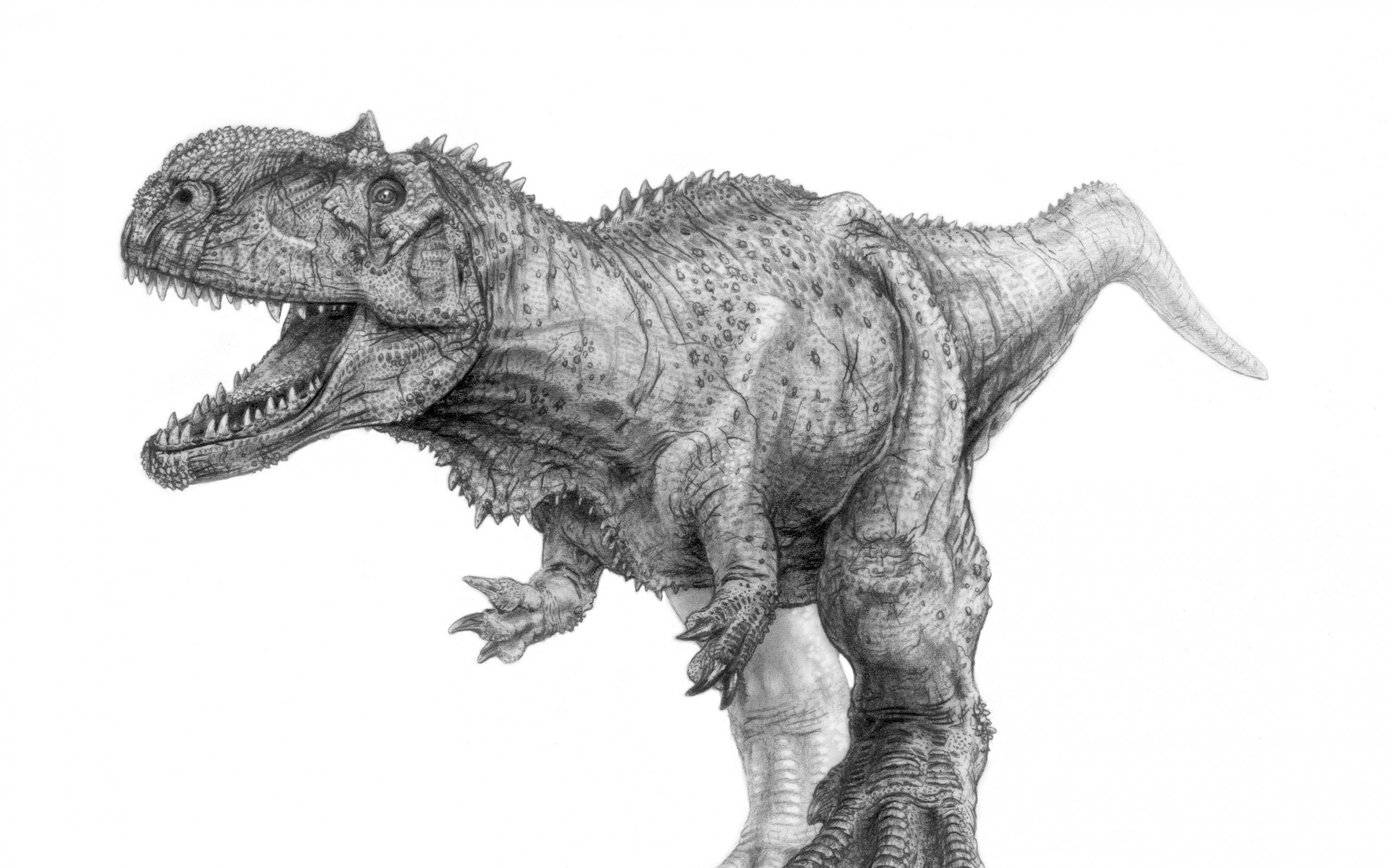2560x1600 Download Wallpaper · Back. tyrannosaurus rex ...