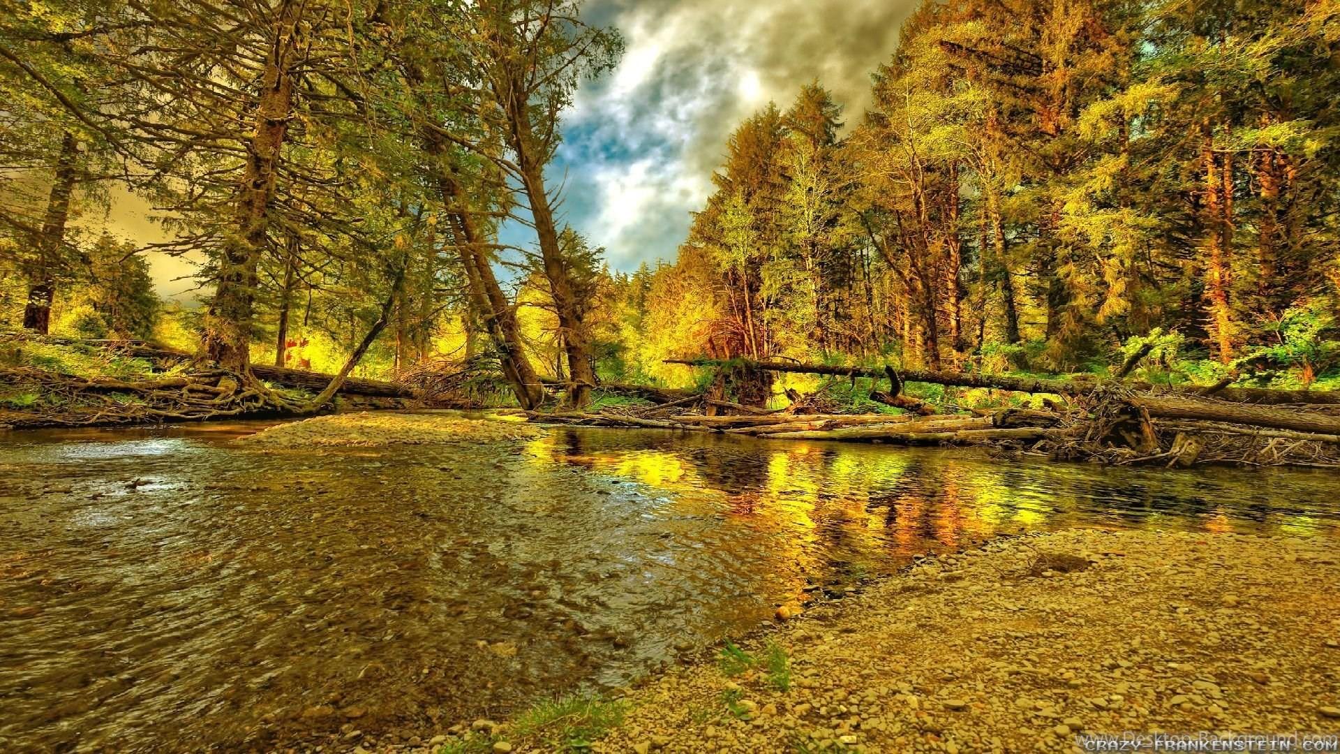 Woods Desktop Wallpaper (73+ images)