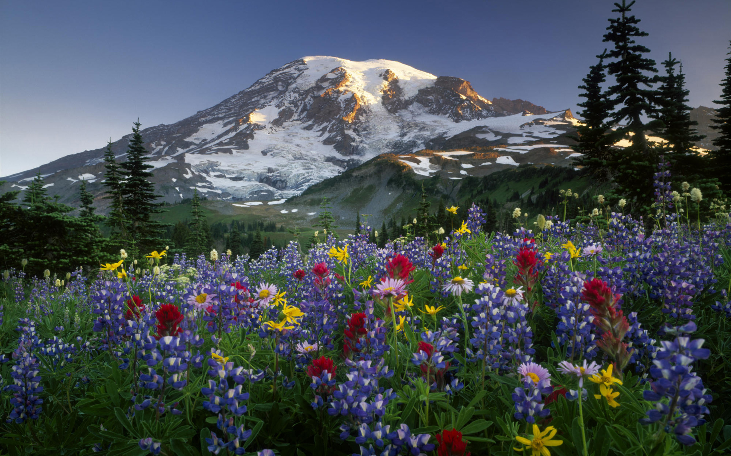 2560x1600 Mountains Wallpaper Free Download · Mountains Wallpapers | Best ... Mount  RainierWild ...