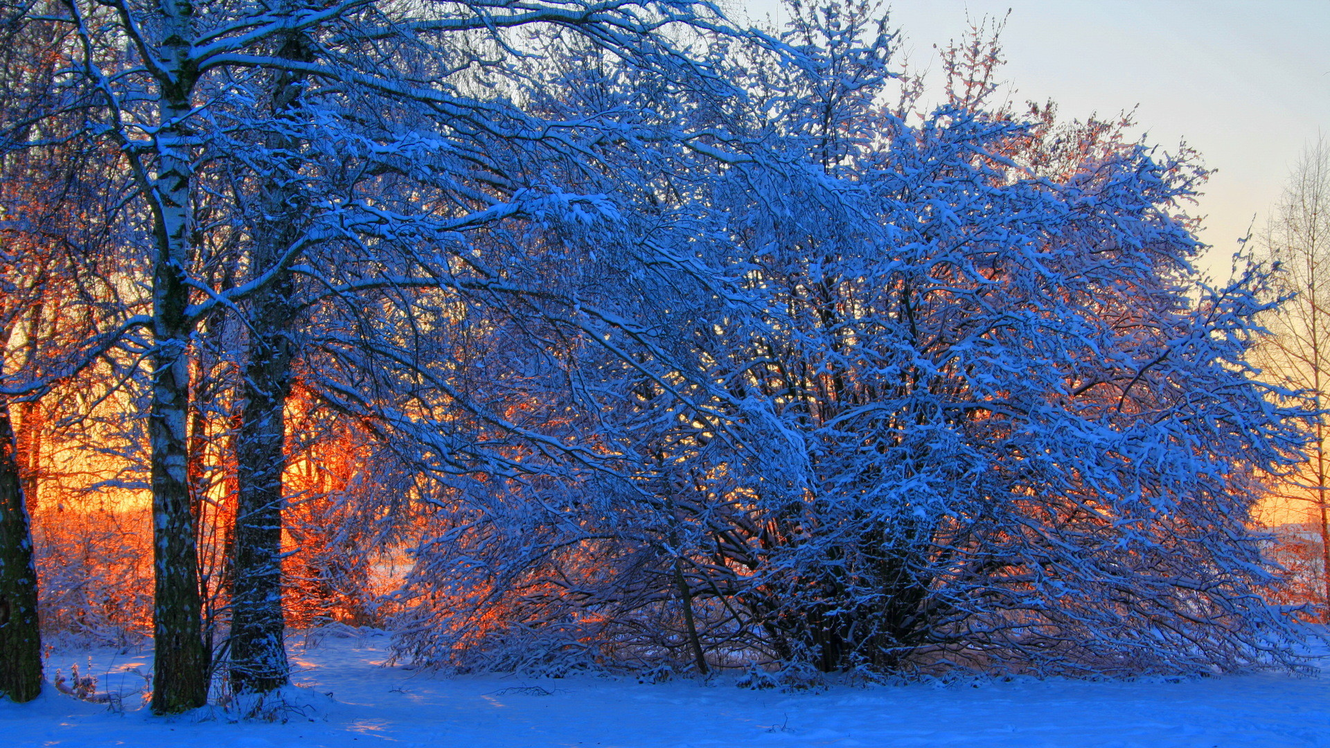 Winter Backgrounds Wallpaper 77 Images
