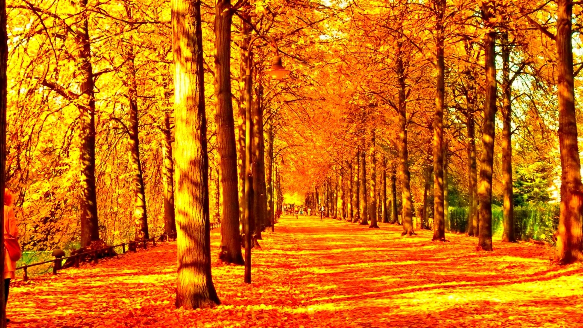 Wallpaper of Fall Season (56+ images)