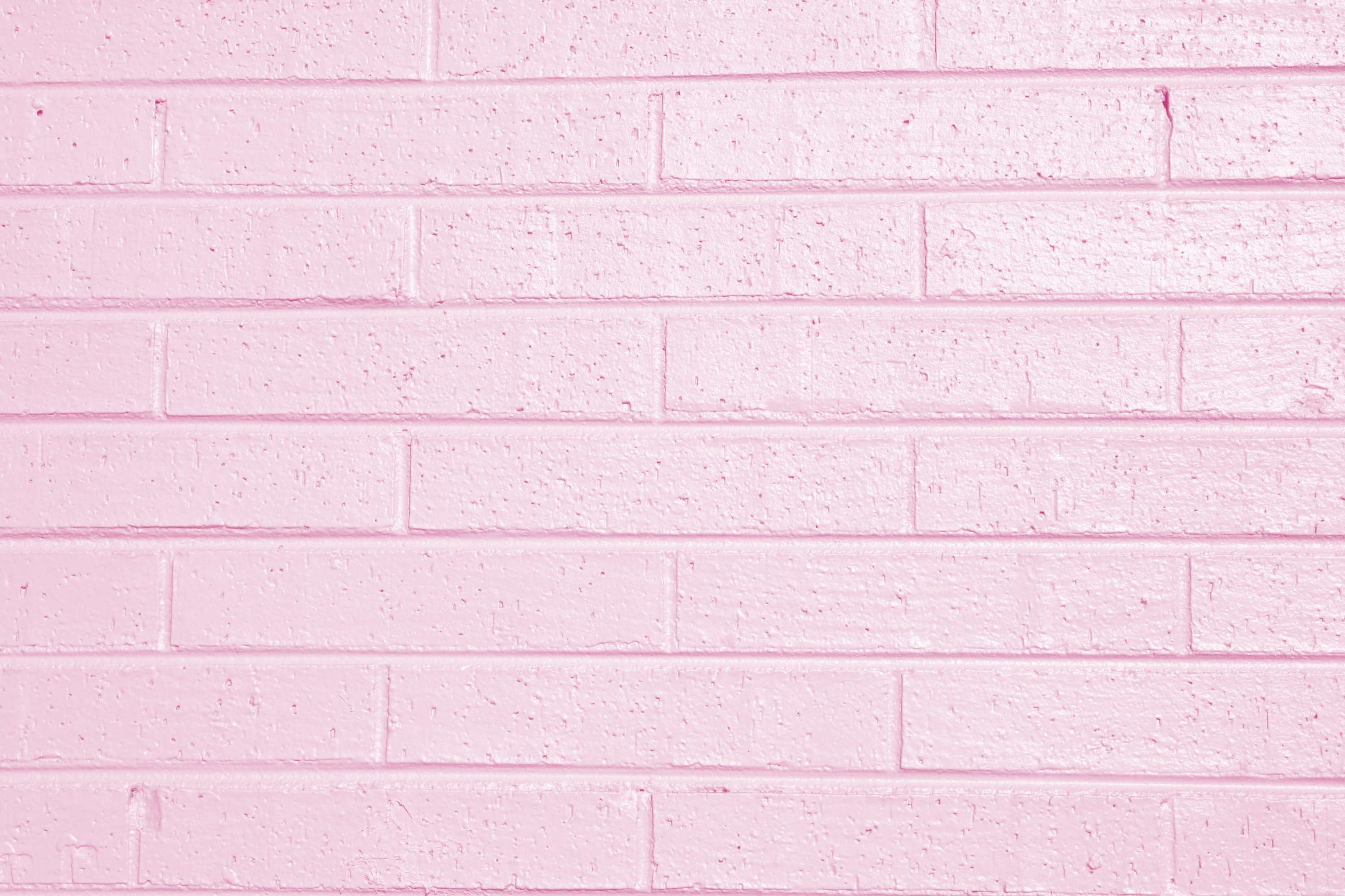 3000x2000 Pink Painted Brick Wall Texture Picture | Free Photograph | Photos . Light  Pink Wallpaper ...