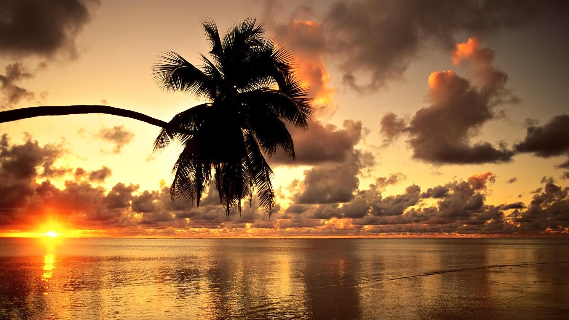 1920x1080 Hawaii Sunset Wallpaper 1080p ...
