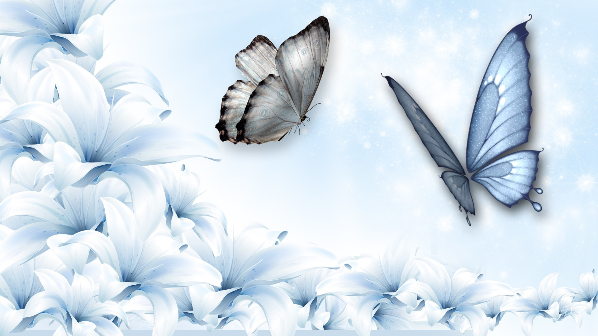 Wall Stickers Hearts Blue Butterfly Wallpaper Background 63 Images