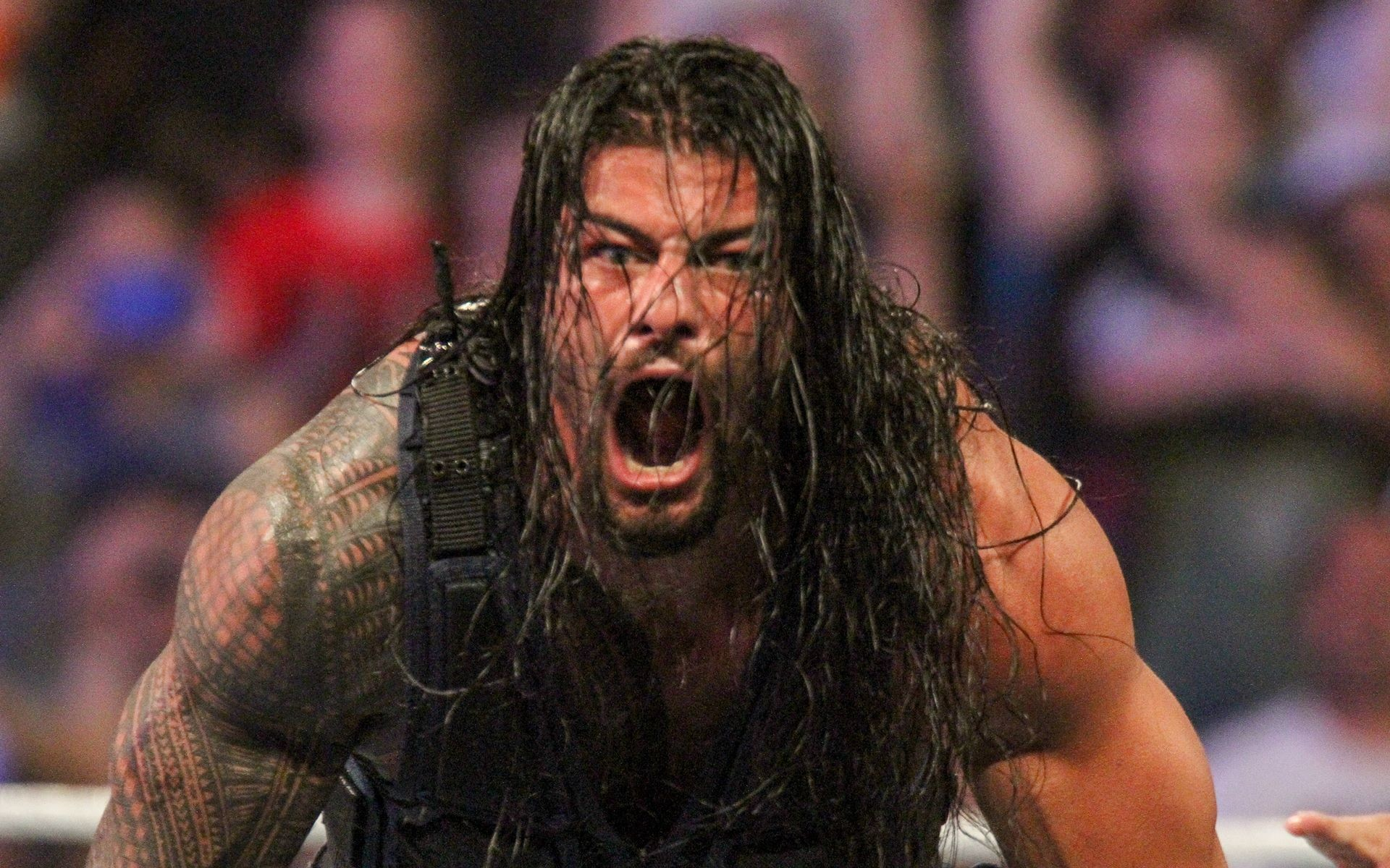 1920x1200 Roman Reigns Full HD Wallpaper-WWE | ImageTown.in