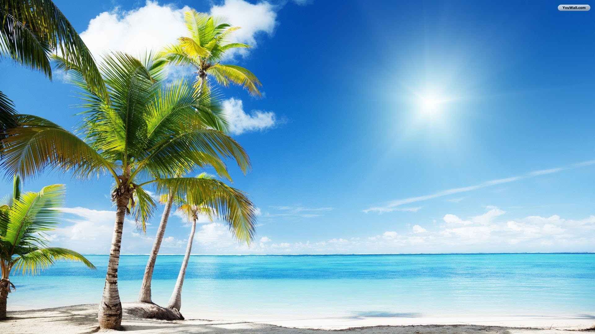 1920x1080 tropical oasis backgrounds - Google Search · Summer WallpaperBeach ...