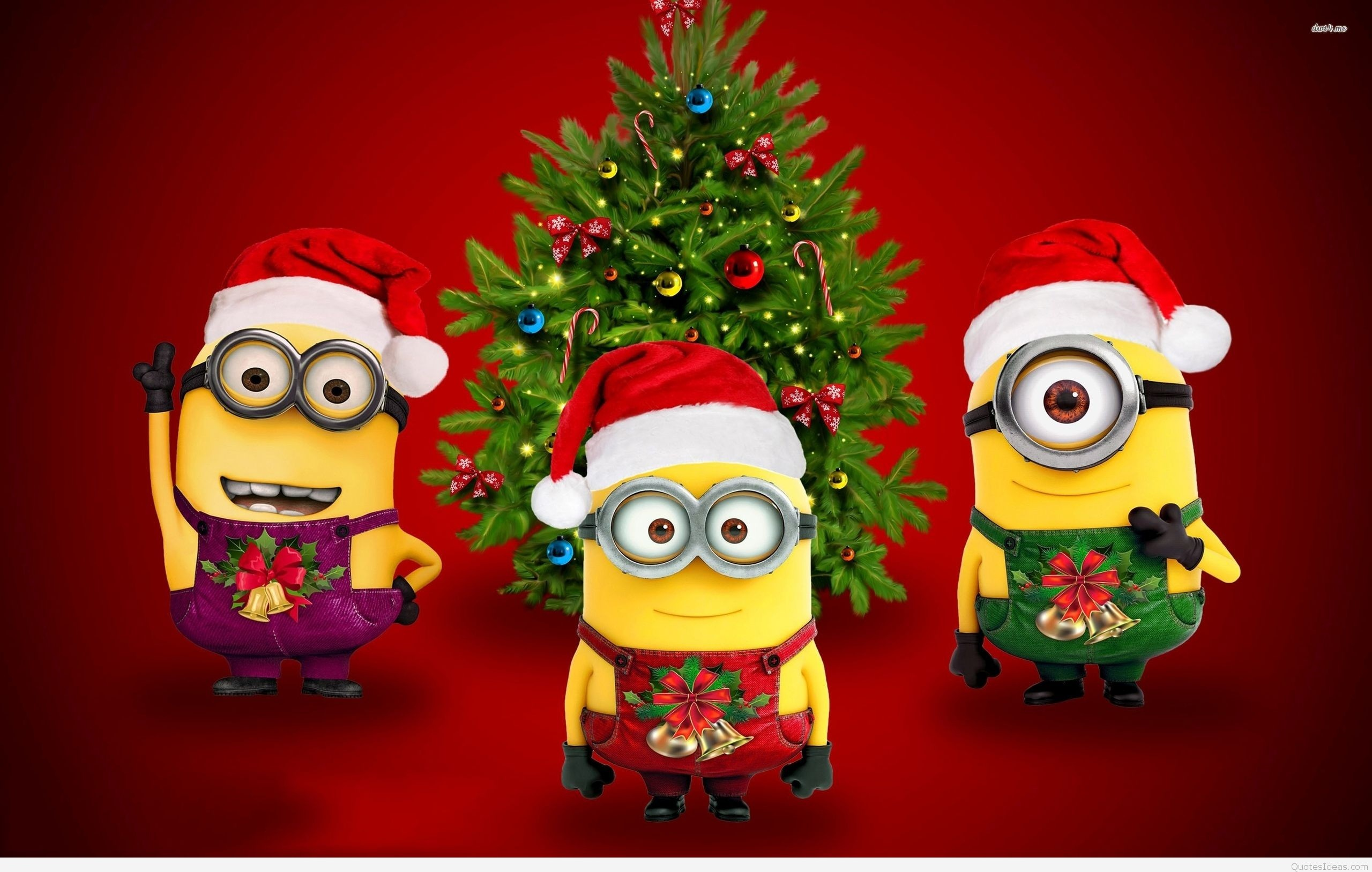 872691 funny christmas wallpapers 2560x1627 for phone funny christmas wallpapers 51 images - Funny Christmas Wallpaper