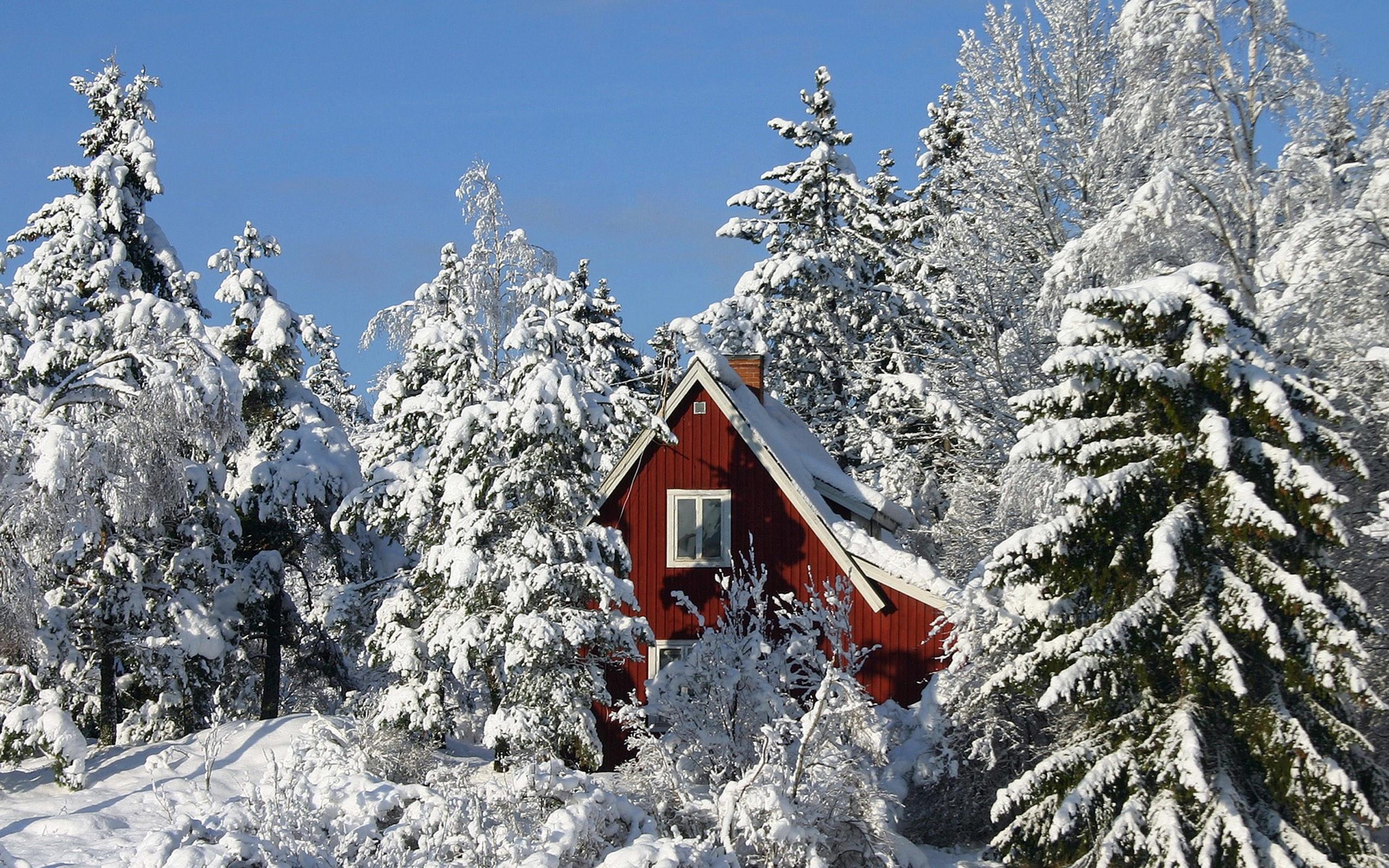 Winter Snow Scenes Wallpaper 49 Images