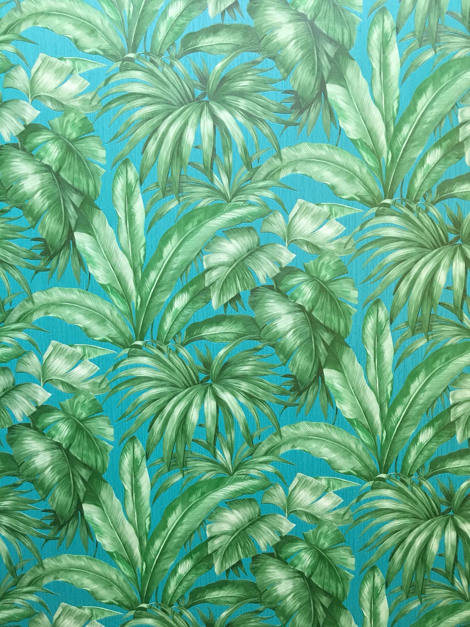 versace hd wallpaper  77  images