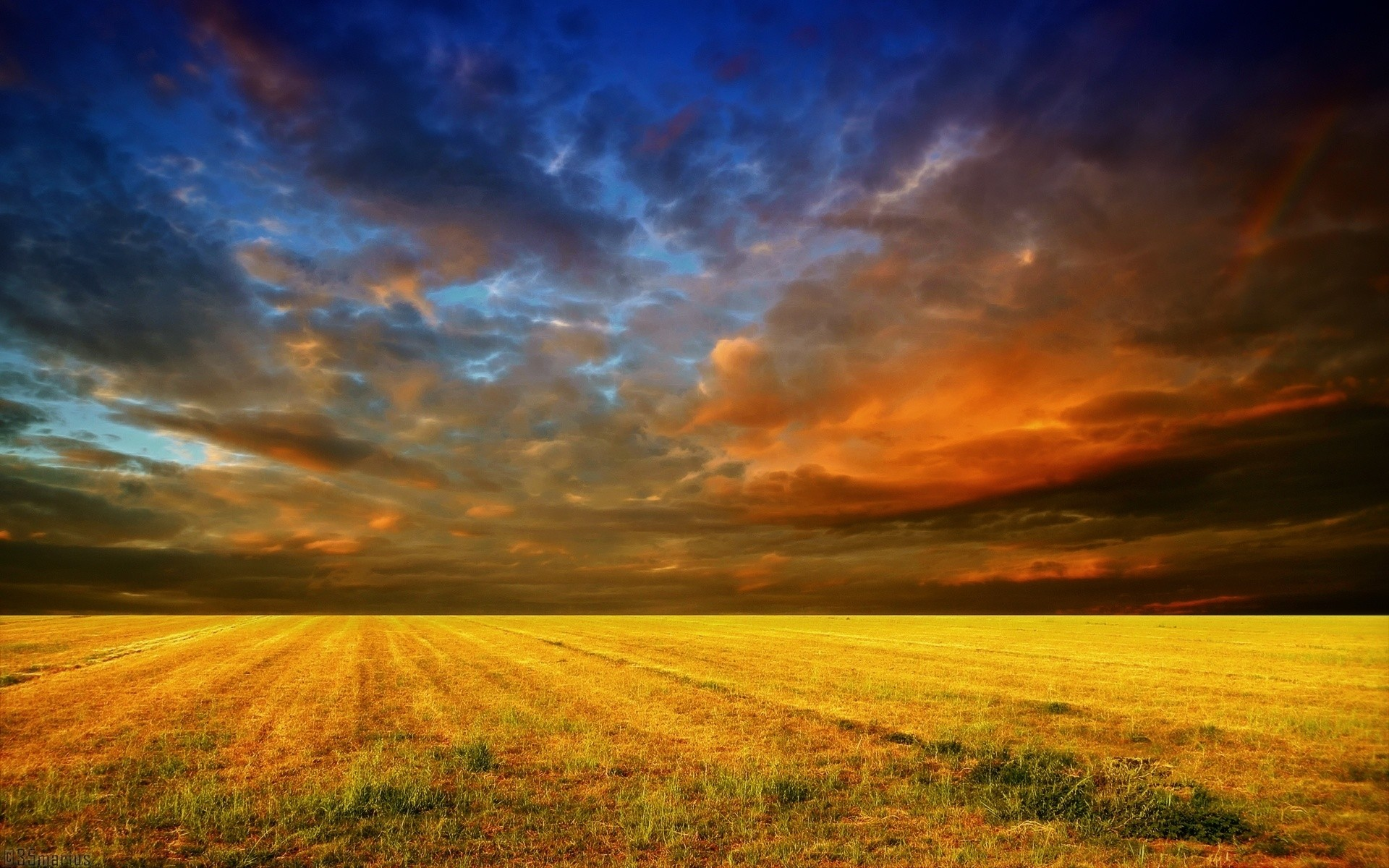 1920x1200 Yellow Field & Red Blue Sky wallpapers and stock photos