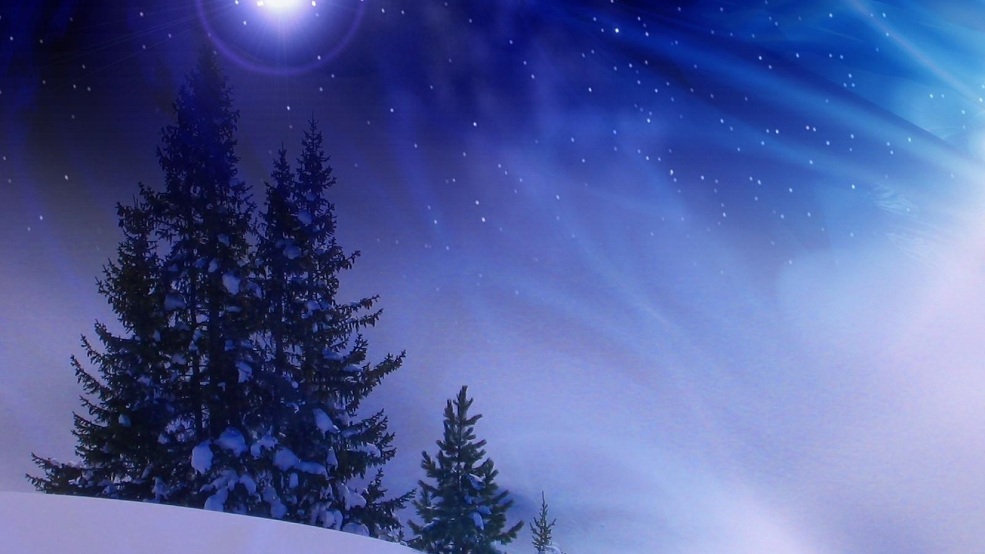 1920x1080 Preview wallpaper christmas trees, snow, winter, midnight, blizzard