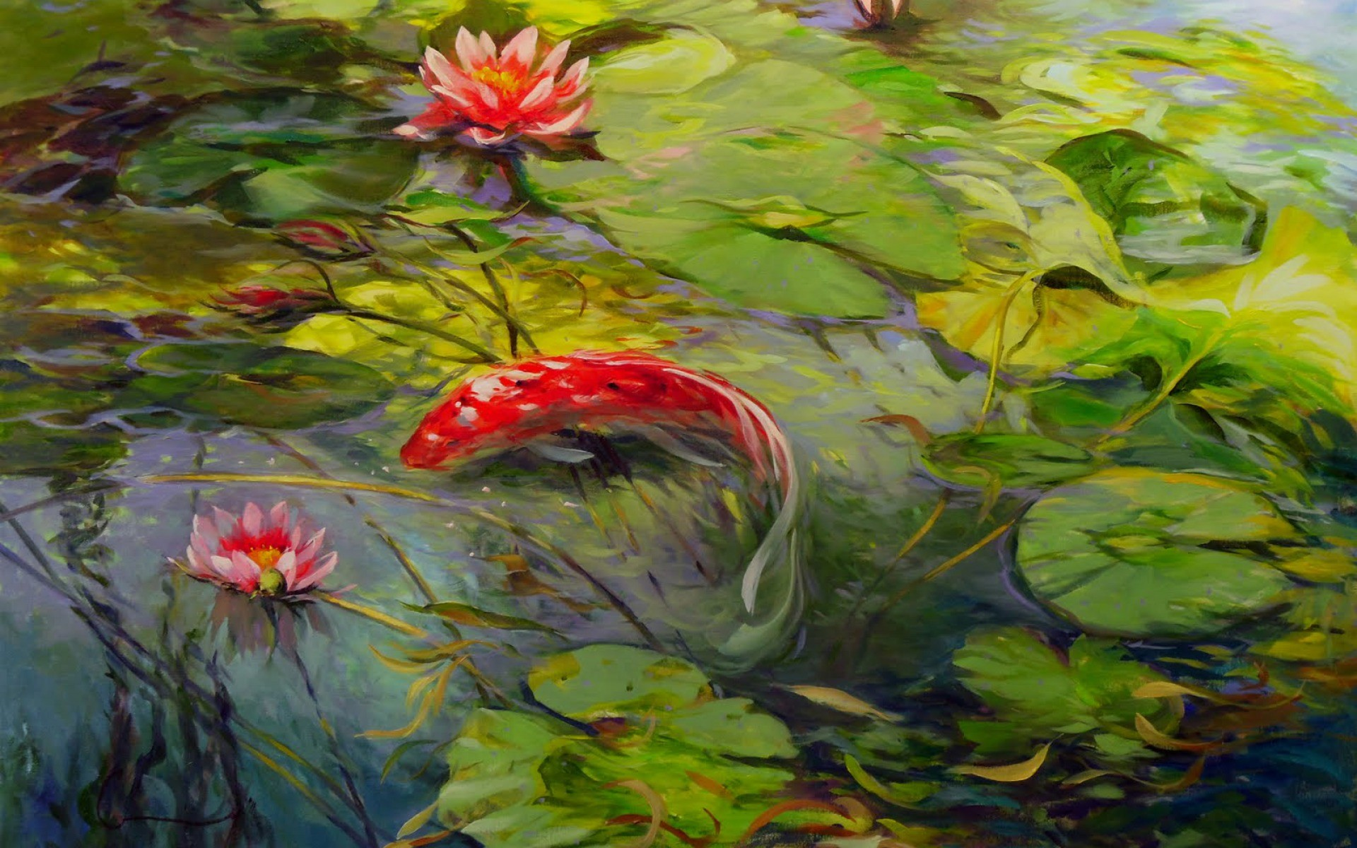 1920x1200 Lovely Koi Lily Pond wallpapers | Lovely Koi Lily Pond stock photos
